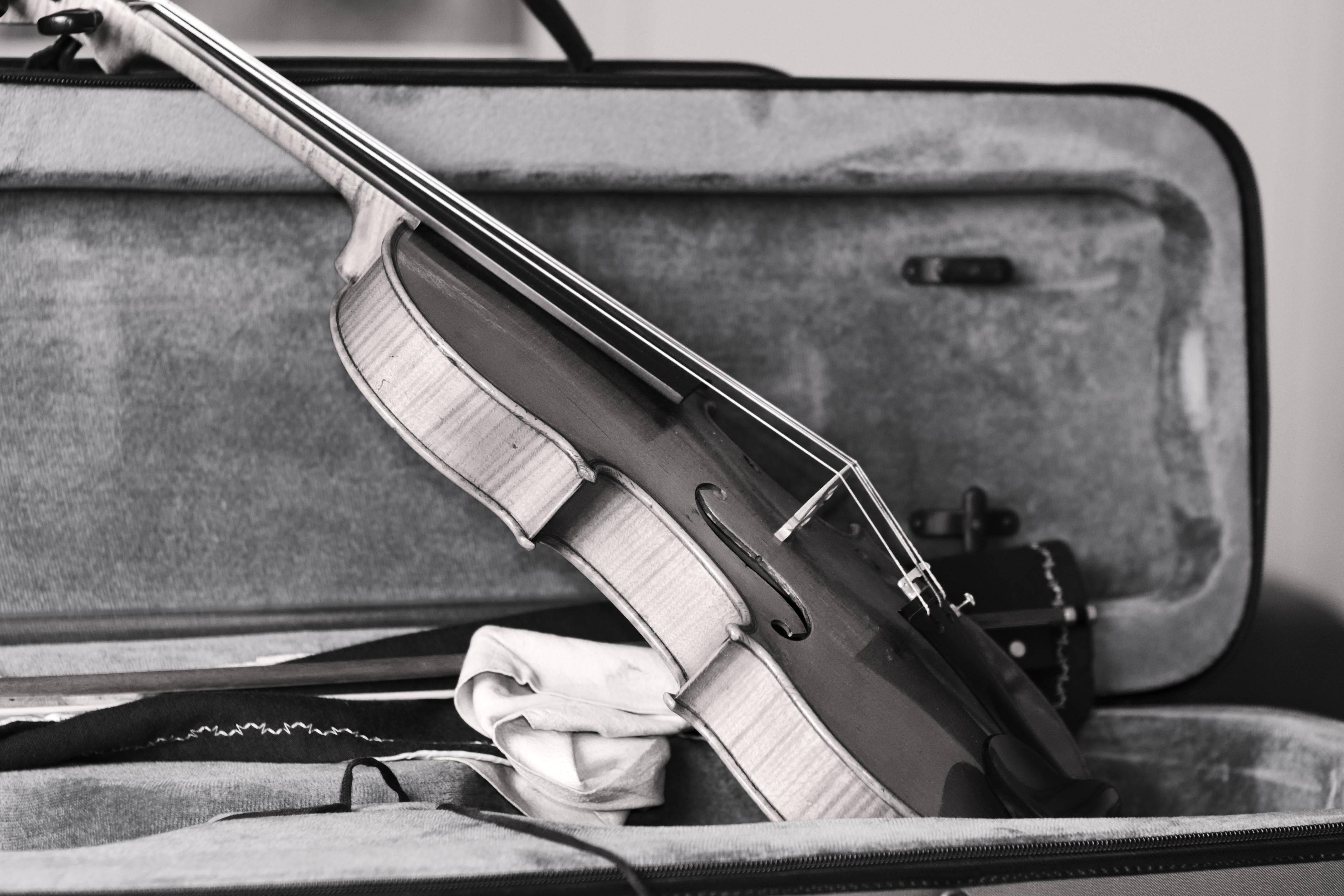 Blackandwhite Bw Music Blackwhite Noiretblanc Nb Violin Musique Noirblanc Violon