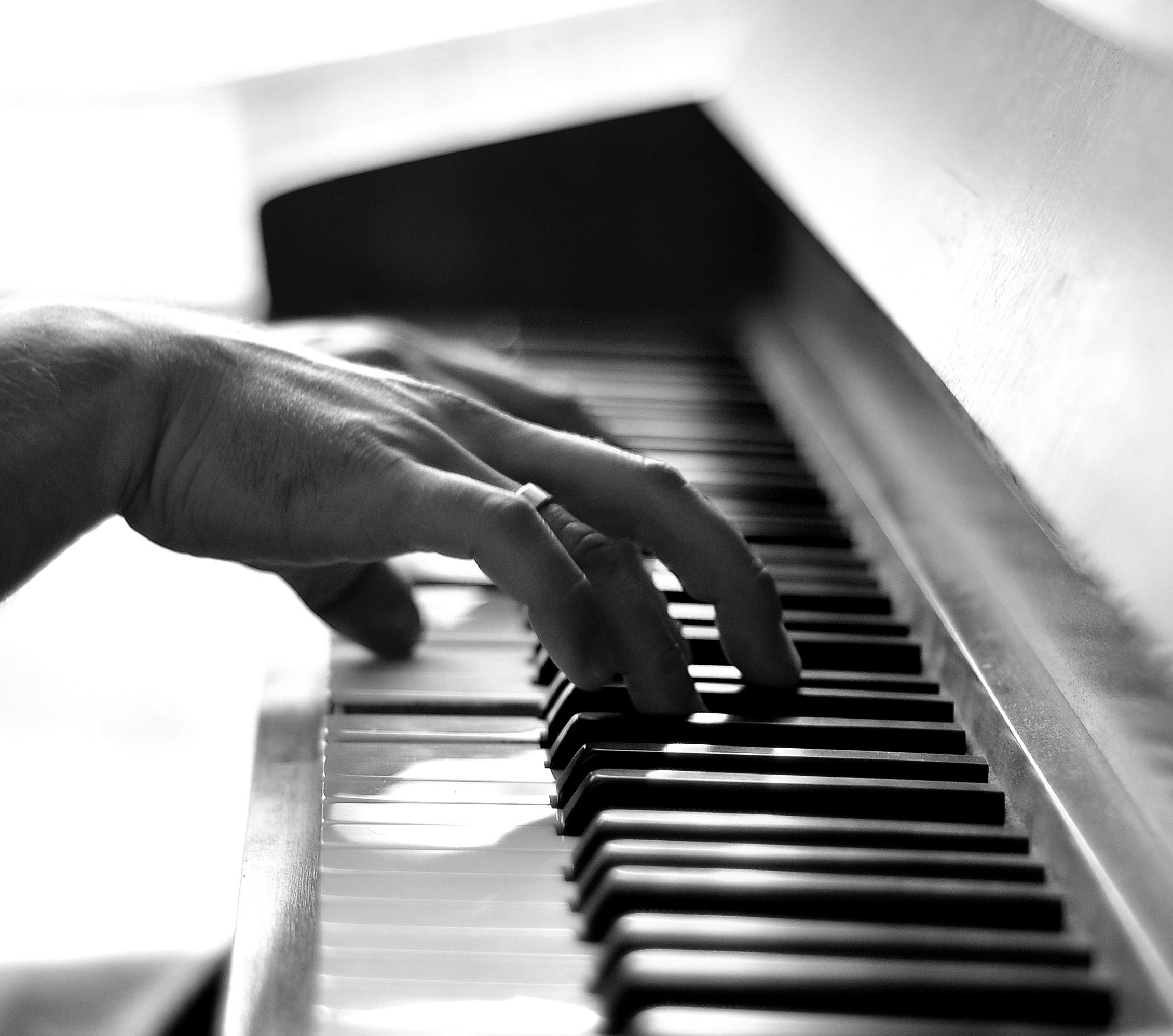 можете пальцы на фортепиано картинки меха, это
