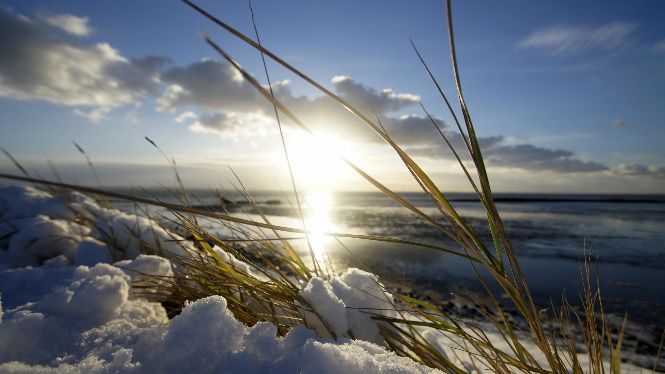 Fond Décran Lame Lumière Neige Soleil Printemps