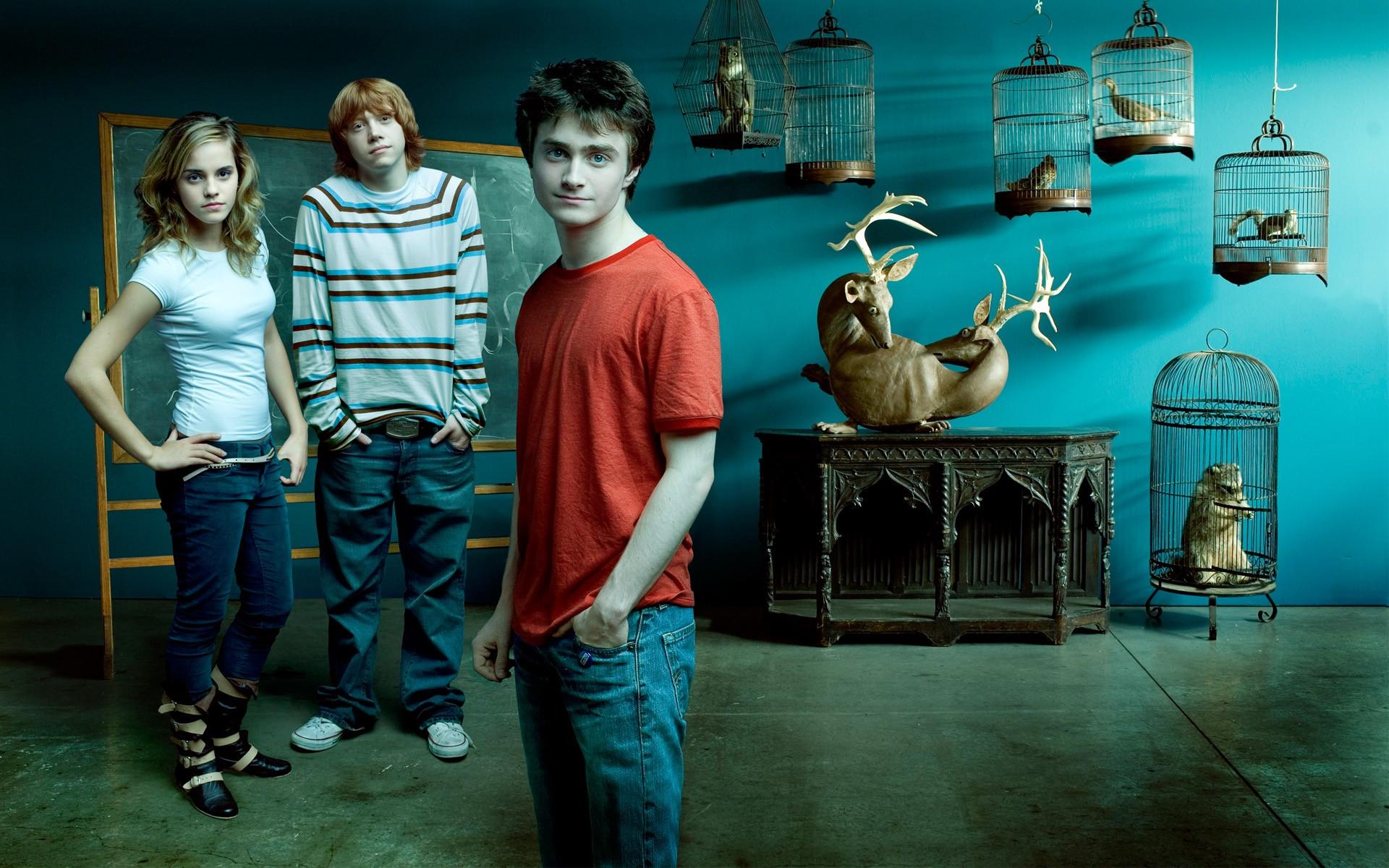Best Wallpaper Harry Potter Blue - blue-Harry-Potter-Emma-Watson-Daniel-Radcliffe-Rupert-Grint-ART-color-photograph-image-snapshot-screenshot-musical-theatre-44711  Trends_738334.jpg