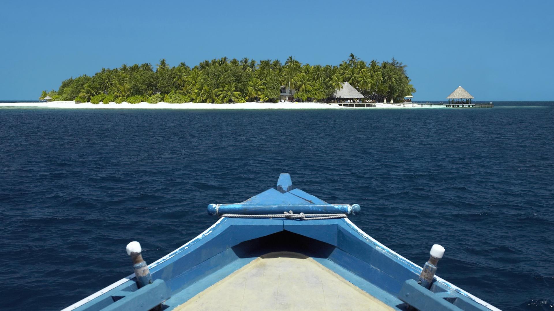 Wallpaper Boat Sea Bay Sky Vehicle Coast Palm Trees
