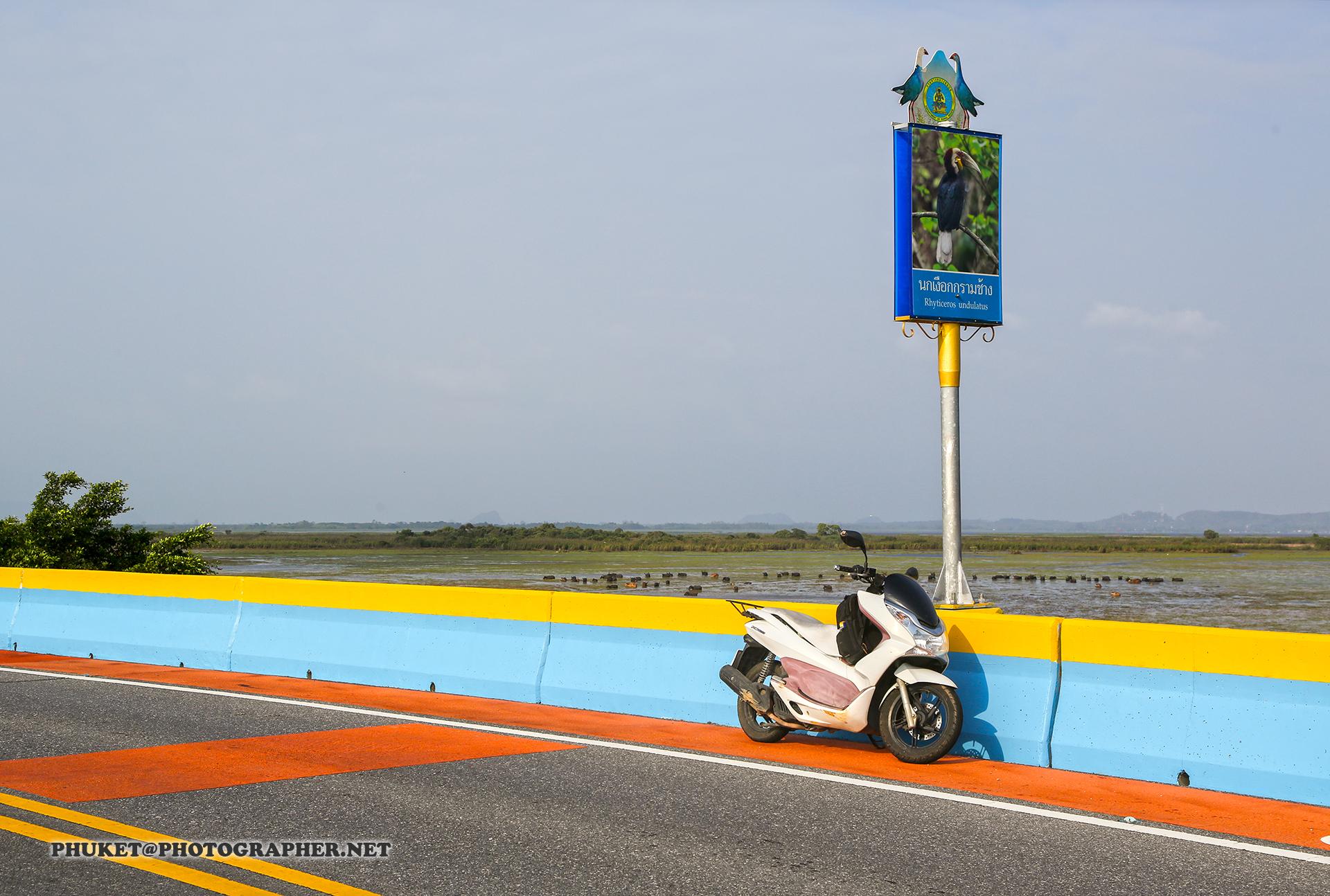 Wallpaper Boat Sea Garden Lake Water Grass Hat Motorcycle Vehicle Road Coffee Wind Island Honda Tea Malaysia Cactus Drive Racing