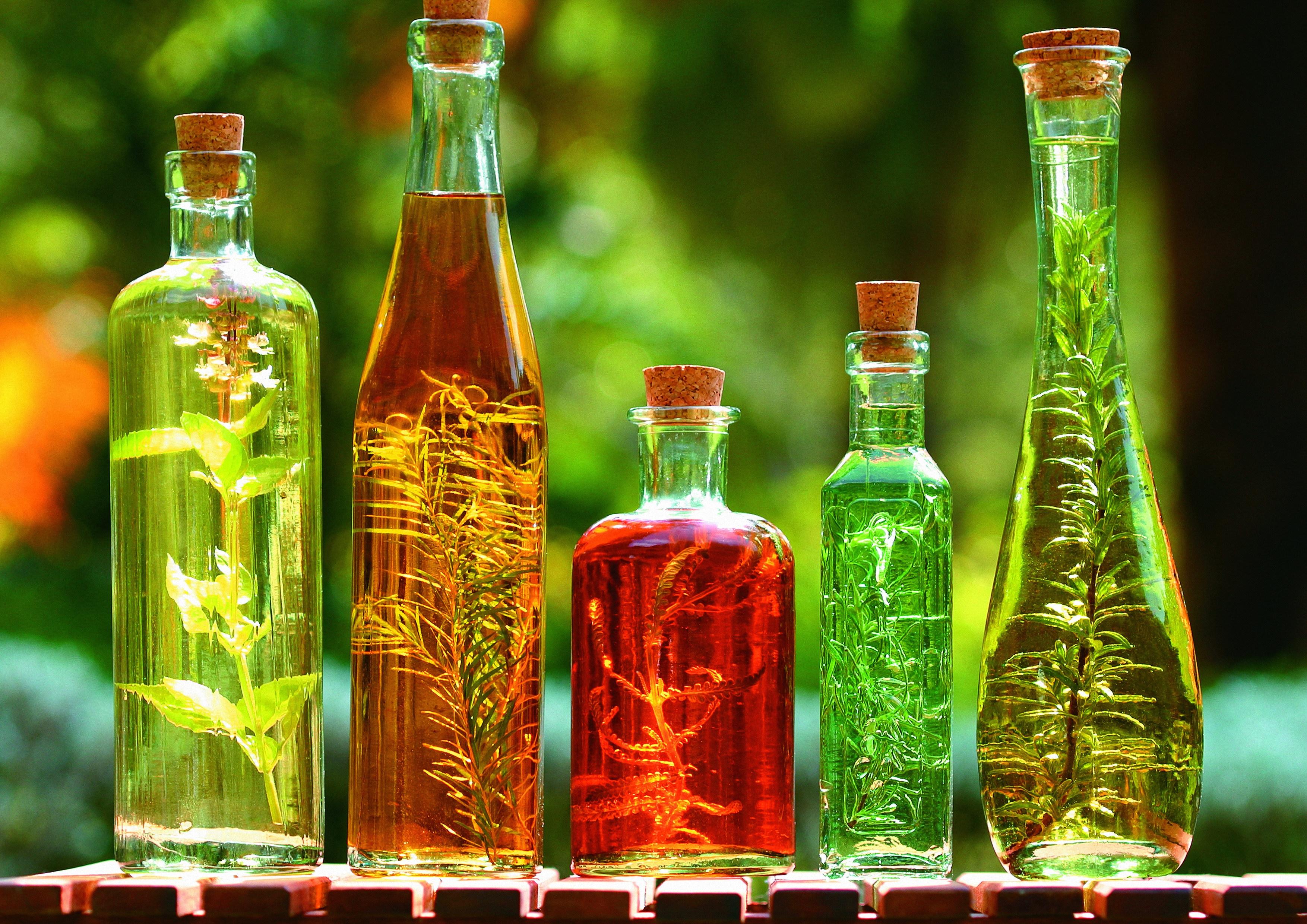 Sfondi Bottiglie Piante Bere Bicchiere Sfondo Verde Alcool