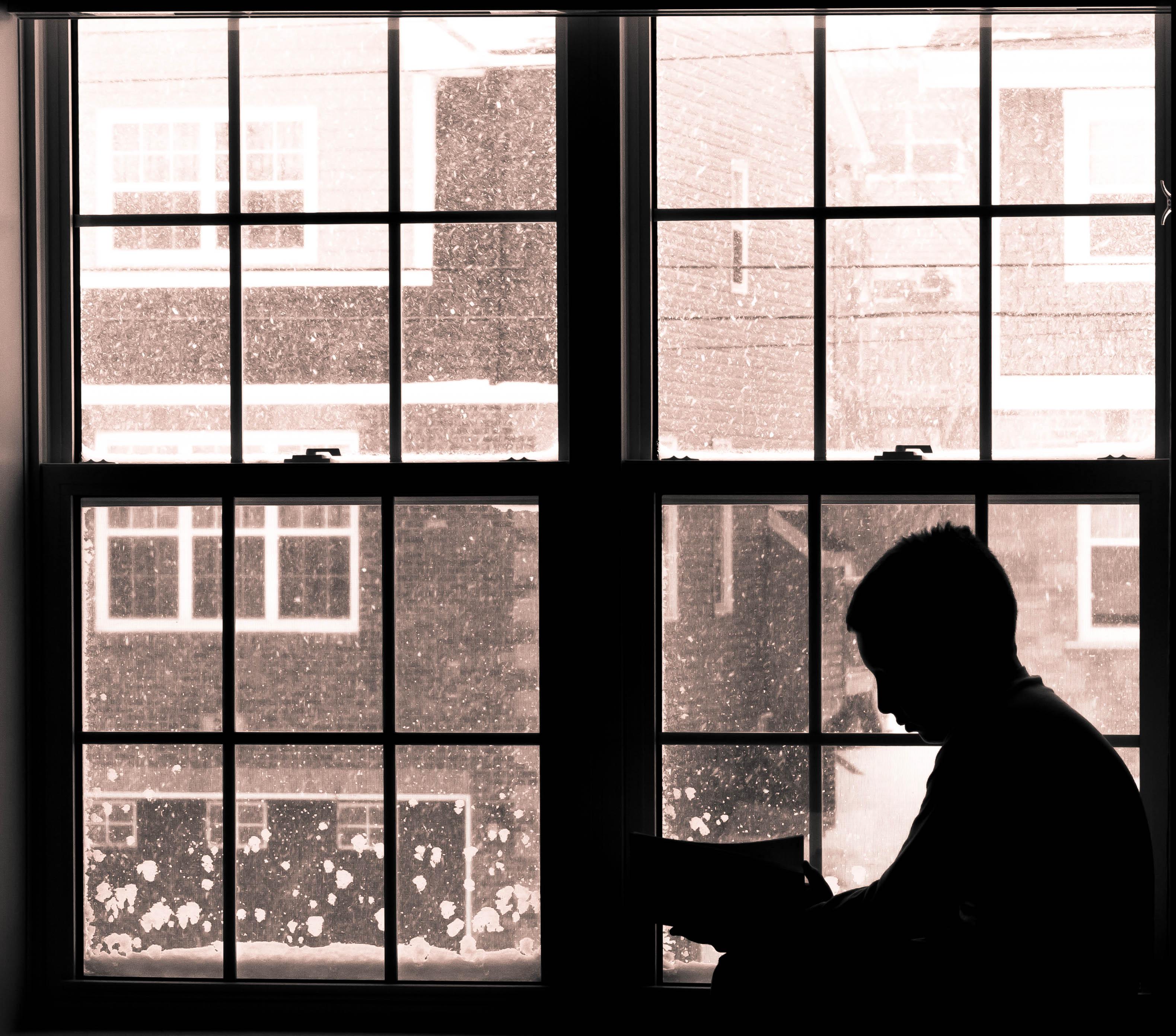 тюльпановидные как сфотографировать силуэт напротив окна молодости