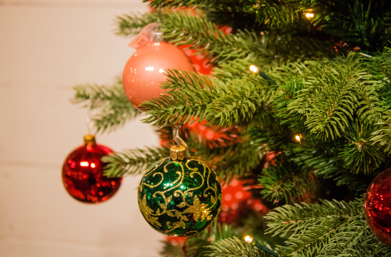 Weihnachtsbaum Ast.Hintergrundbilder Ast Weihnachtsbaum Weihnachten Urlaub Tanne