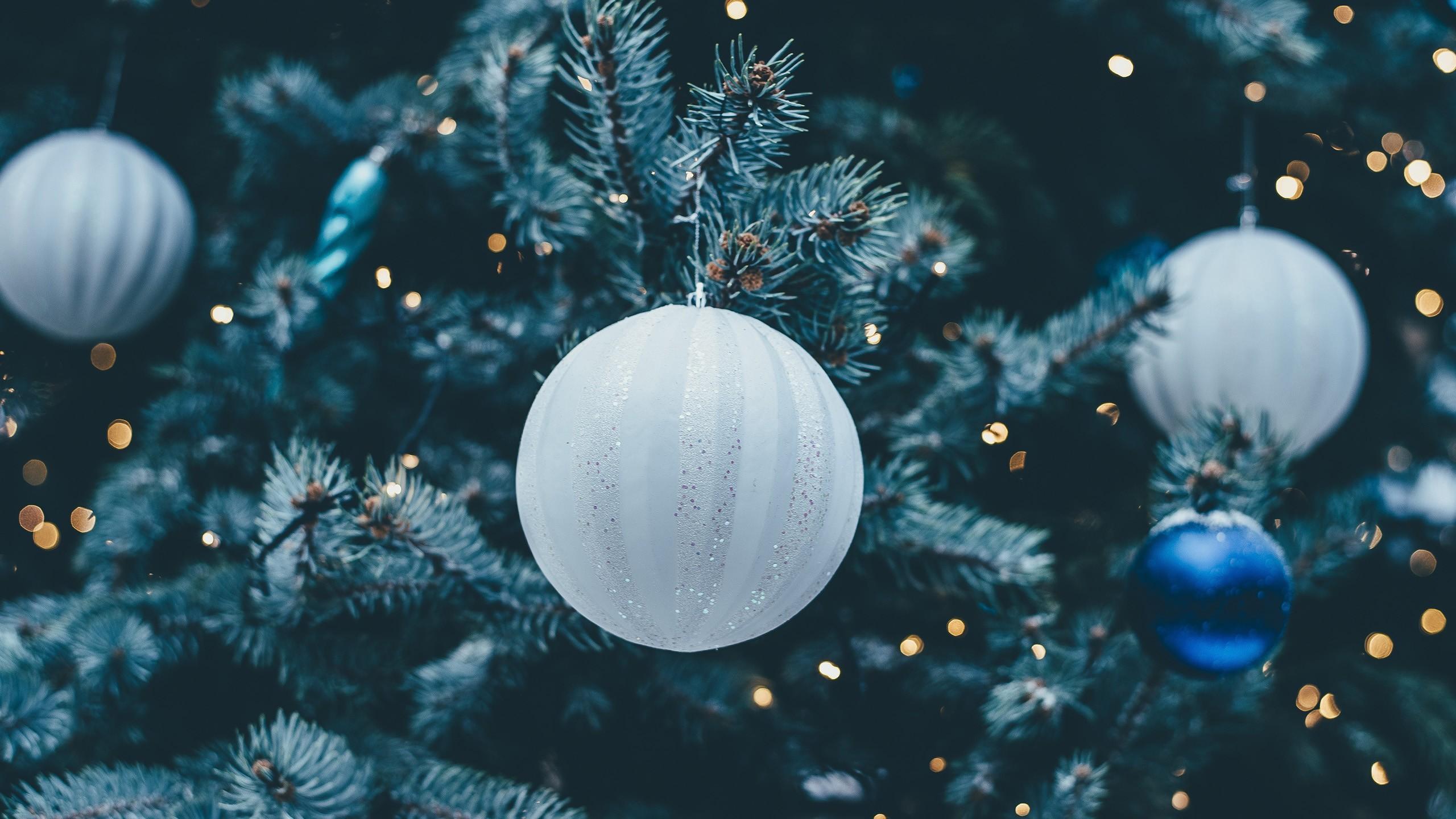 Fond D Ecran Branche Bleu Arbre De Noel Cercle Decorations De