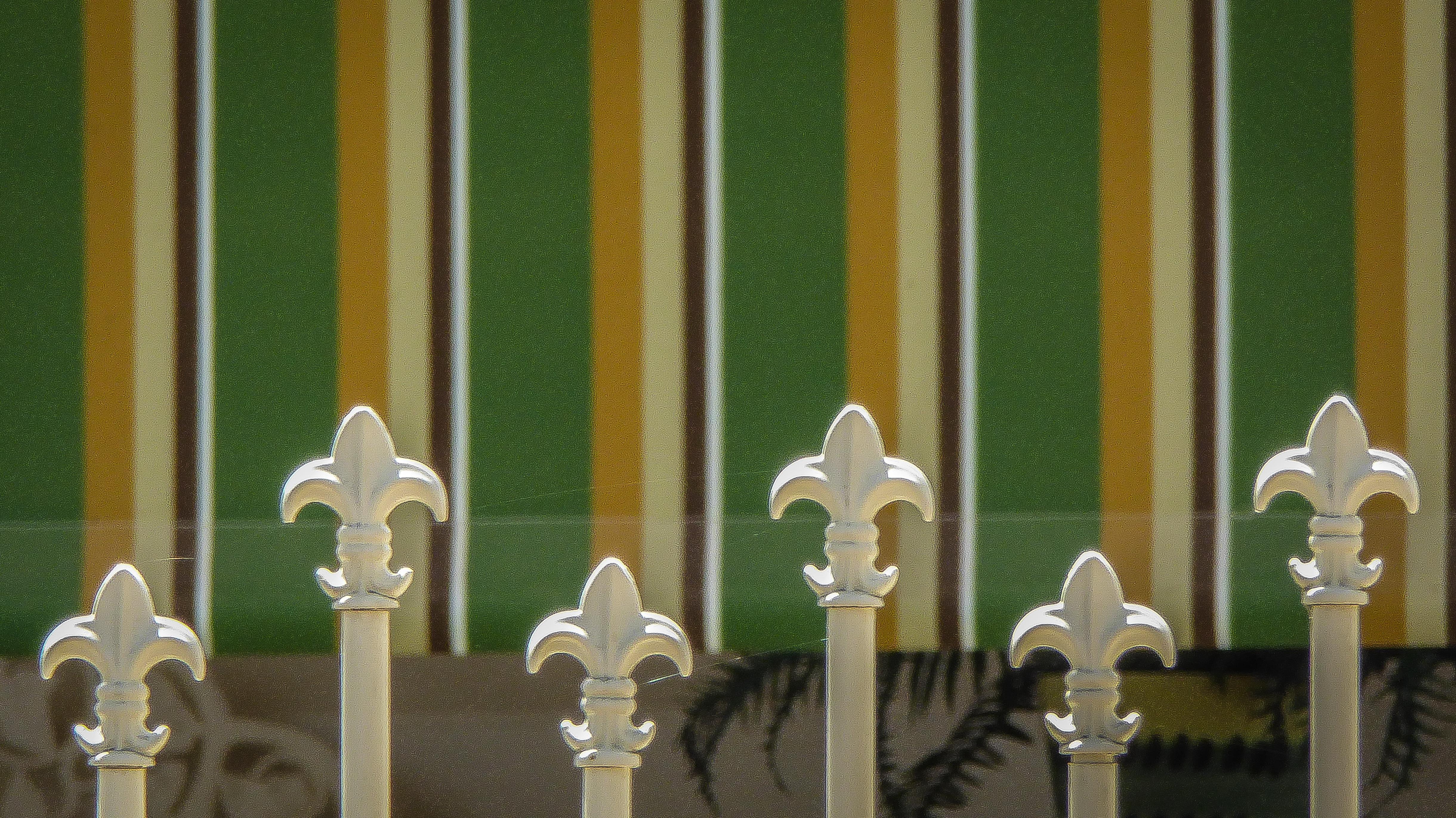 Hintergrundbilder Braun Weiss Grun Vertikal Fleurs Zaun