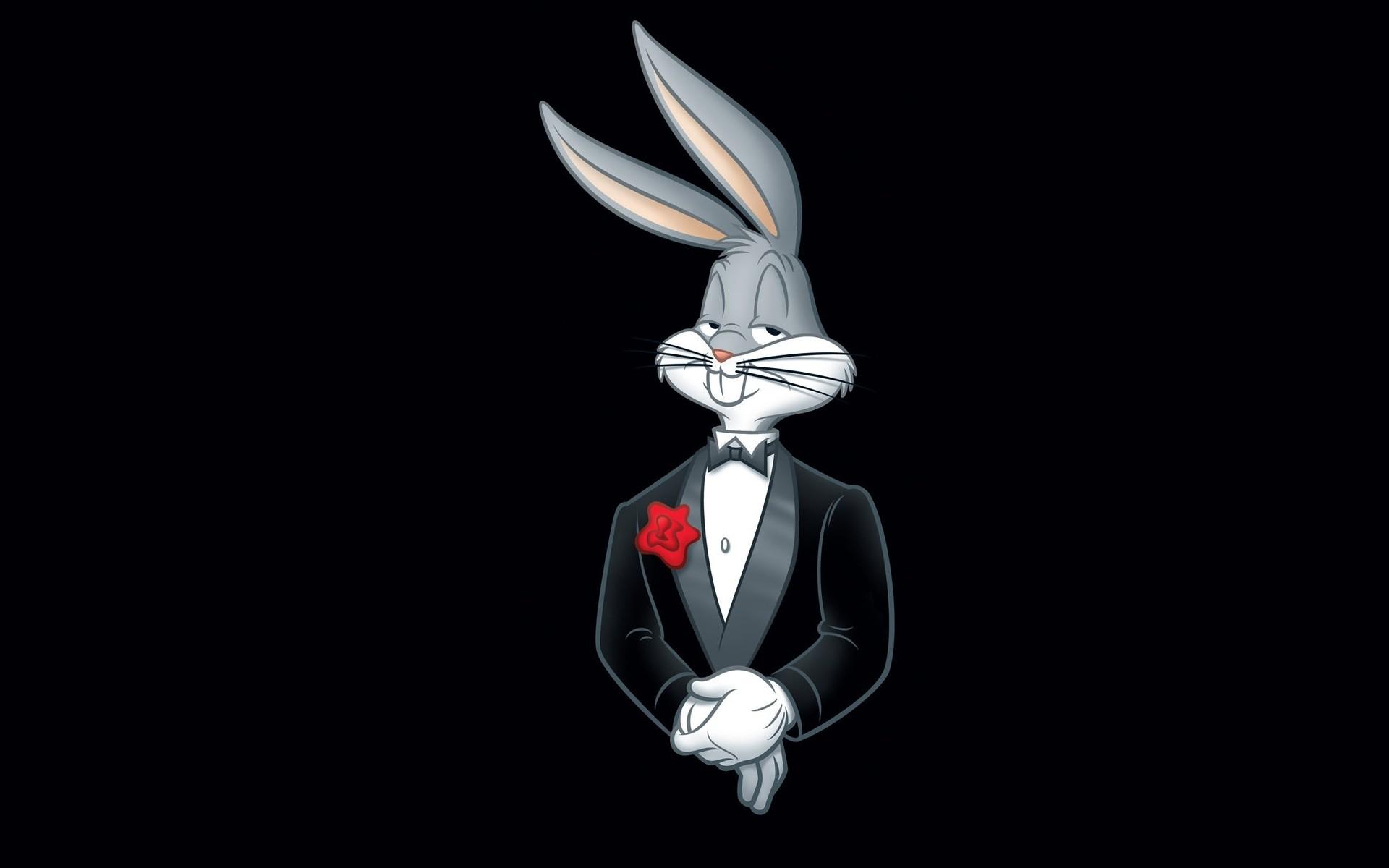 Fondos De Pantalla : Dibujos Animados, Trajes, Conejos