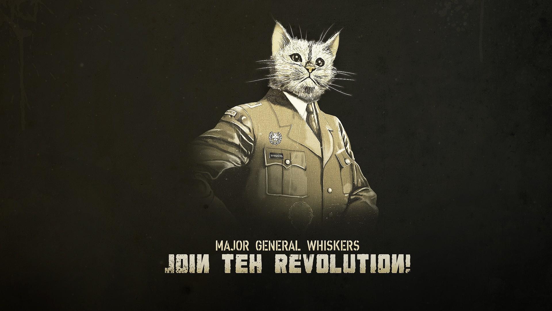 wallpaper cat artwork typography uniform darkness 1920x1080 diams1988 227898 hd wallpapers wallhere wallhere