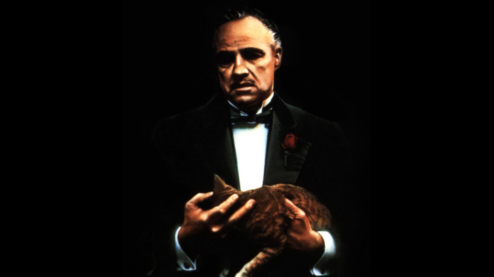 https://get.wallhere.com/photo/cat-musician-guitarist-singing-The-Godfather-Marlon-Brando-Vito-Corleone-performance-stage-screenshot-speech-284228.jpg