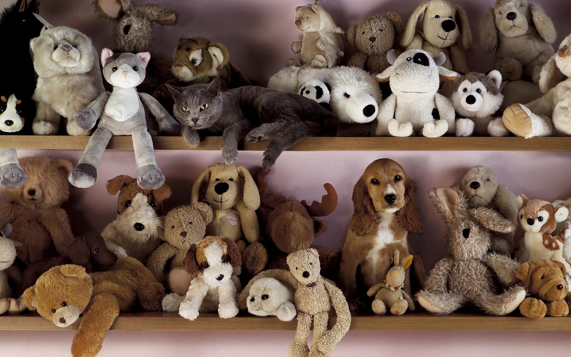 смотреть картинки игрушек животных