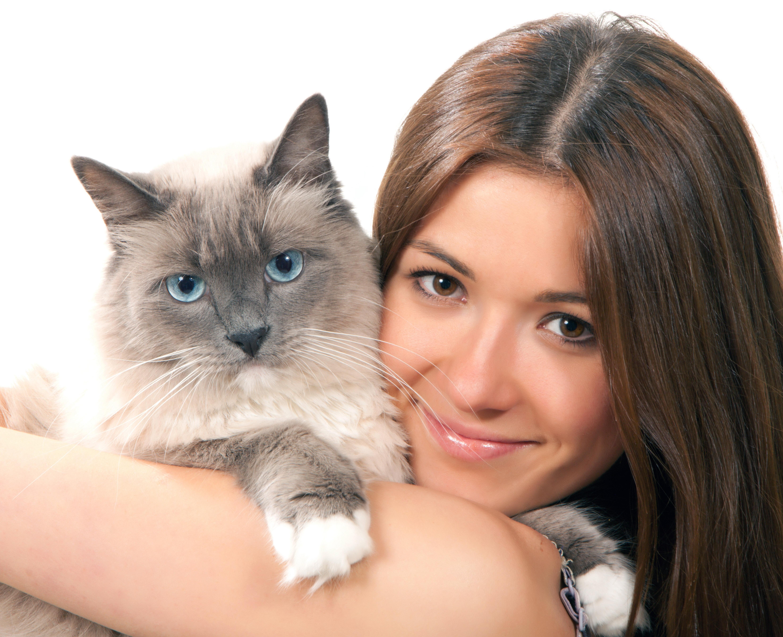 Красивые картинки девушка и кот