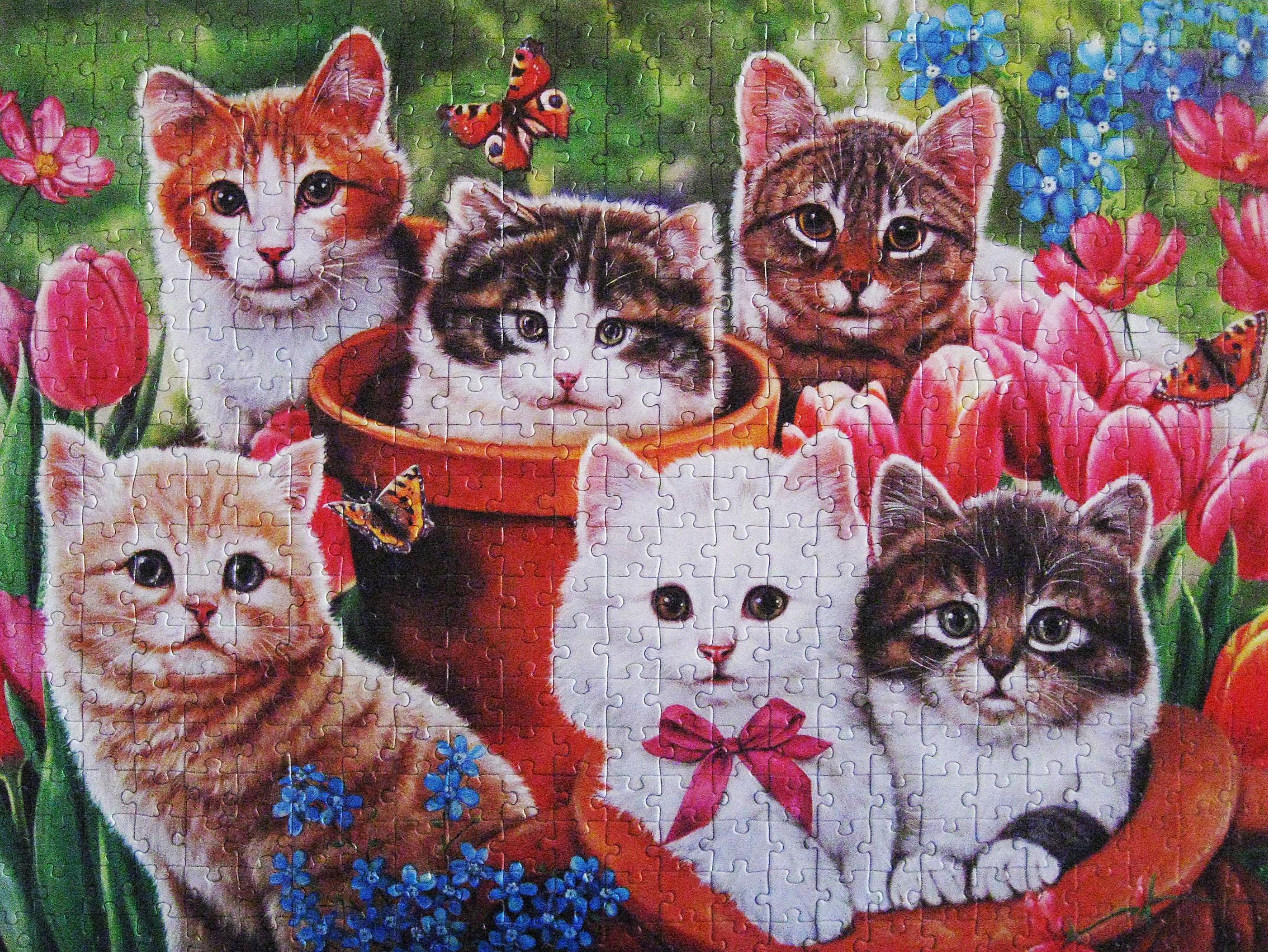 Masaustu Kediler Sanat Yavru Kediler Yapboz Oyunlari Katart