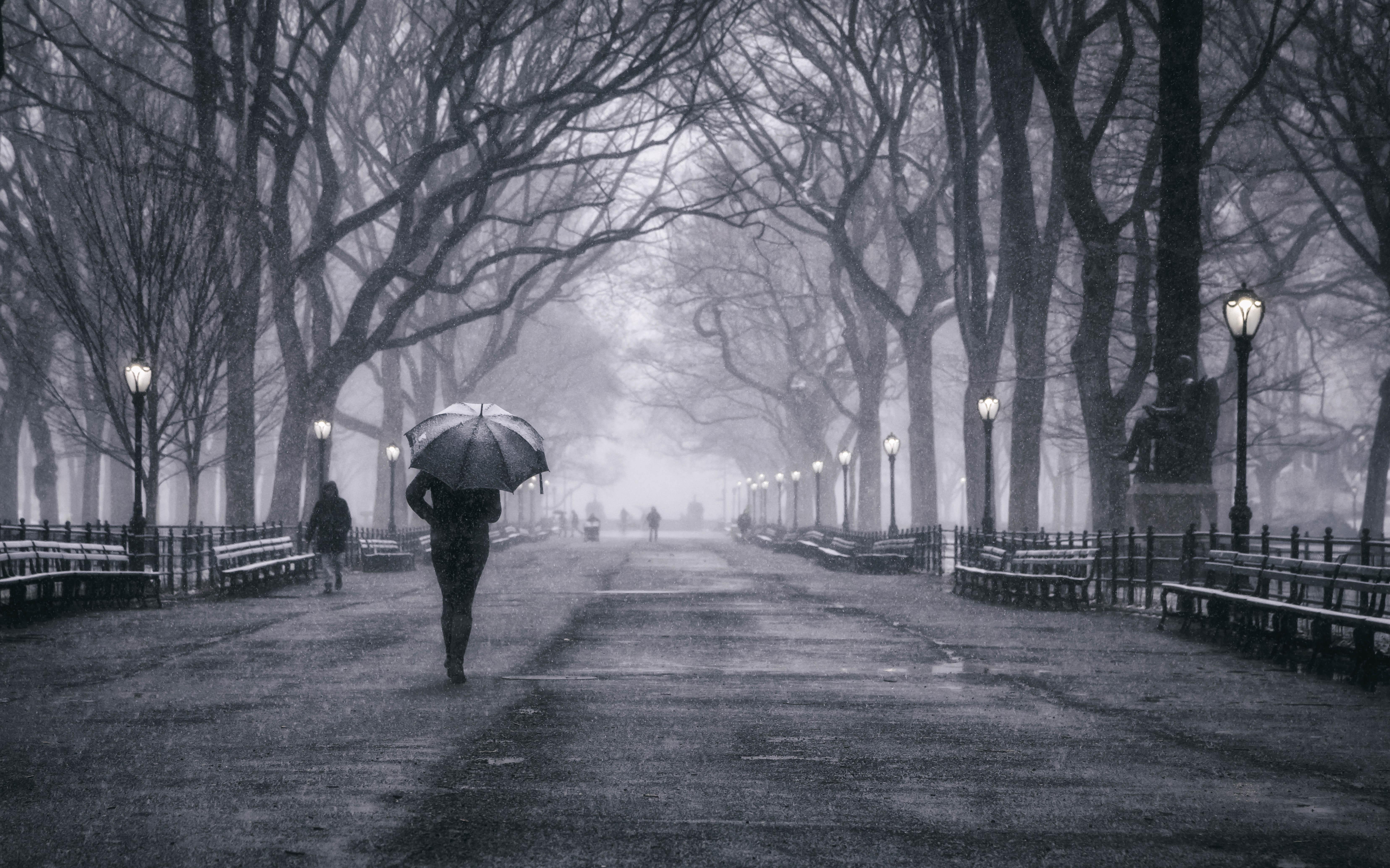 Обои manhattan, центральный парк, new york city. Города foto 14