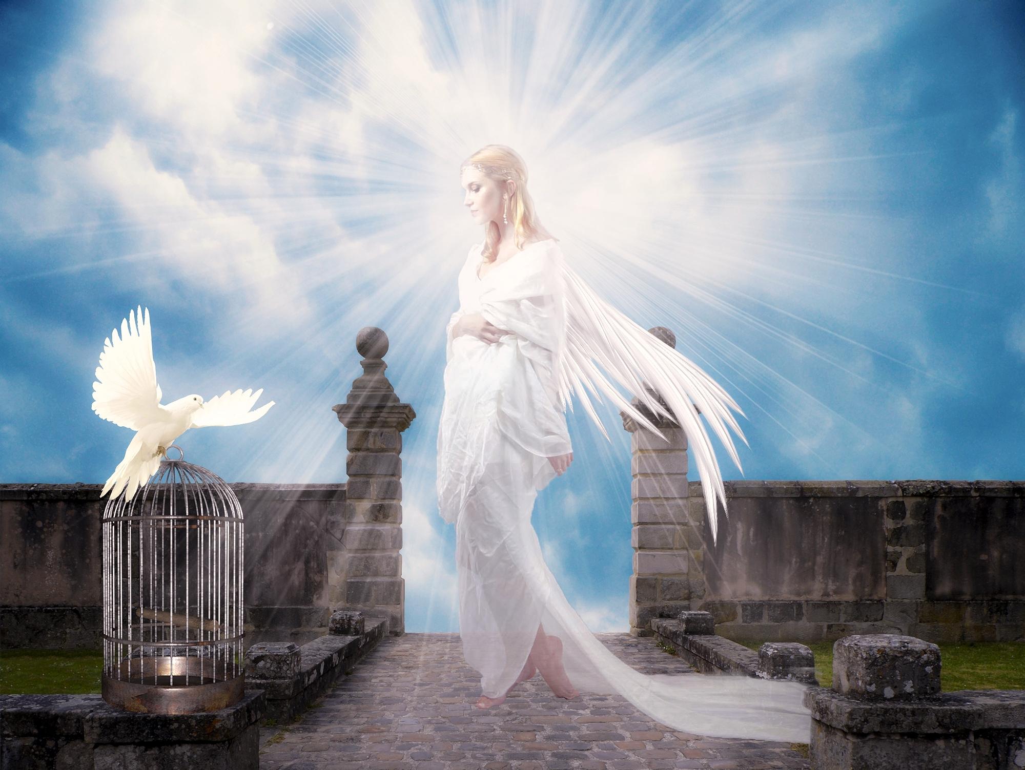 очень понравились картинки про ангела и желания природе
