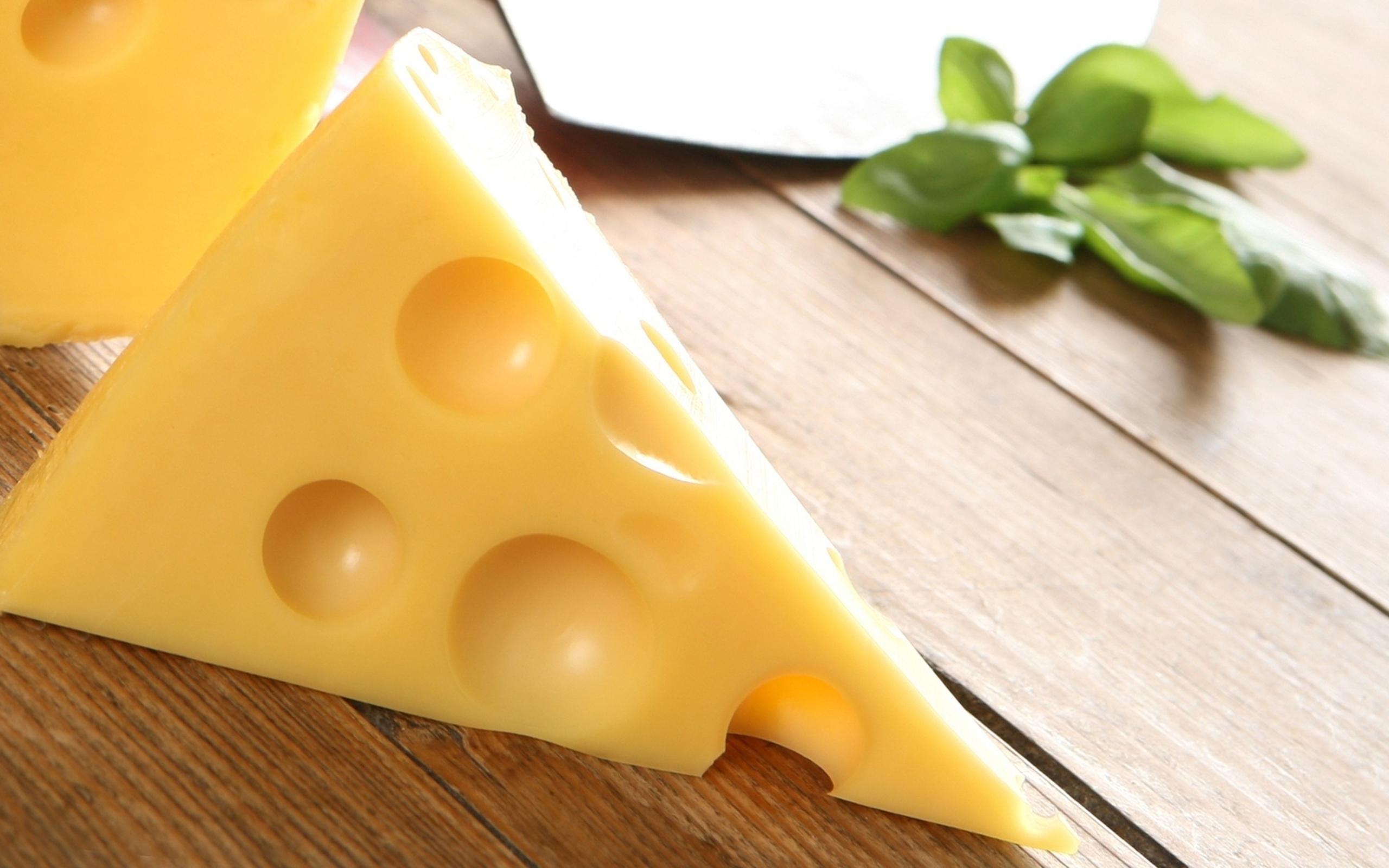 Wallpaper Cheese Food Piece 2560x1600 1028348 Hd
