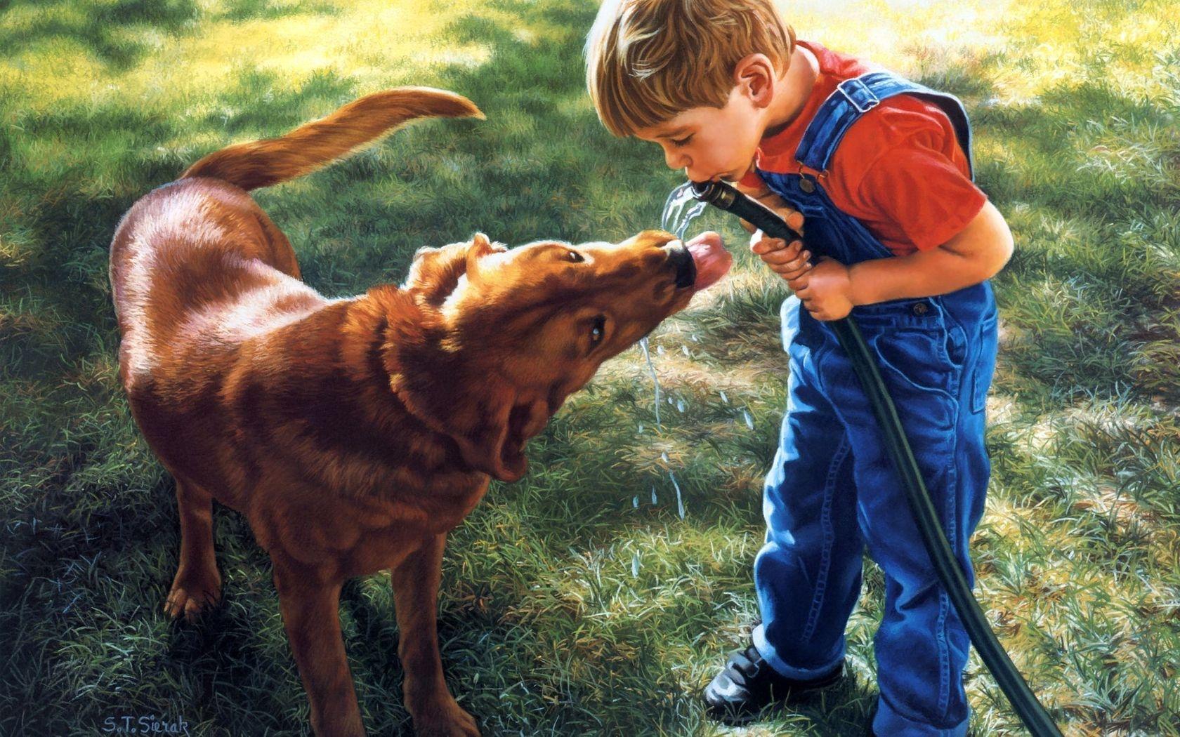 Картинки мальчиков с собакой