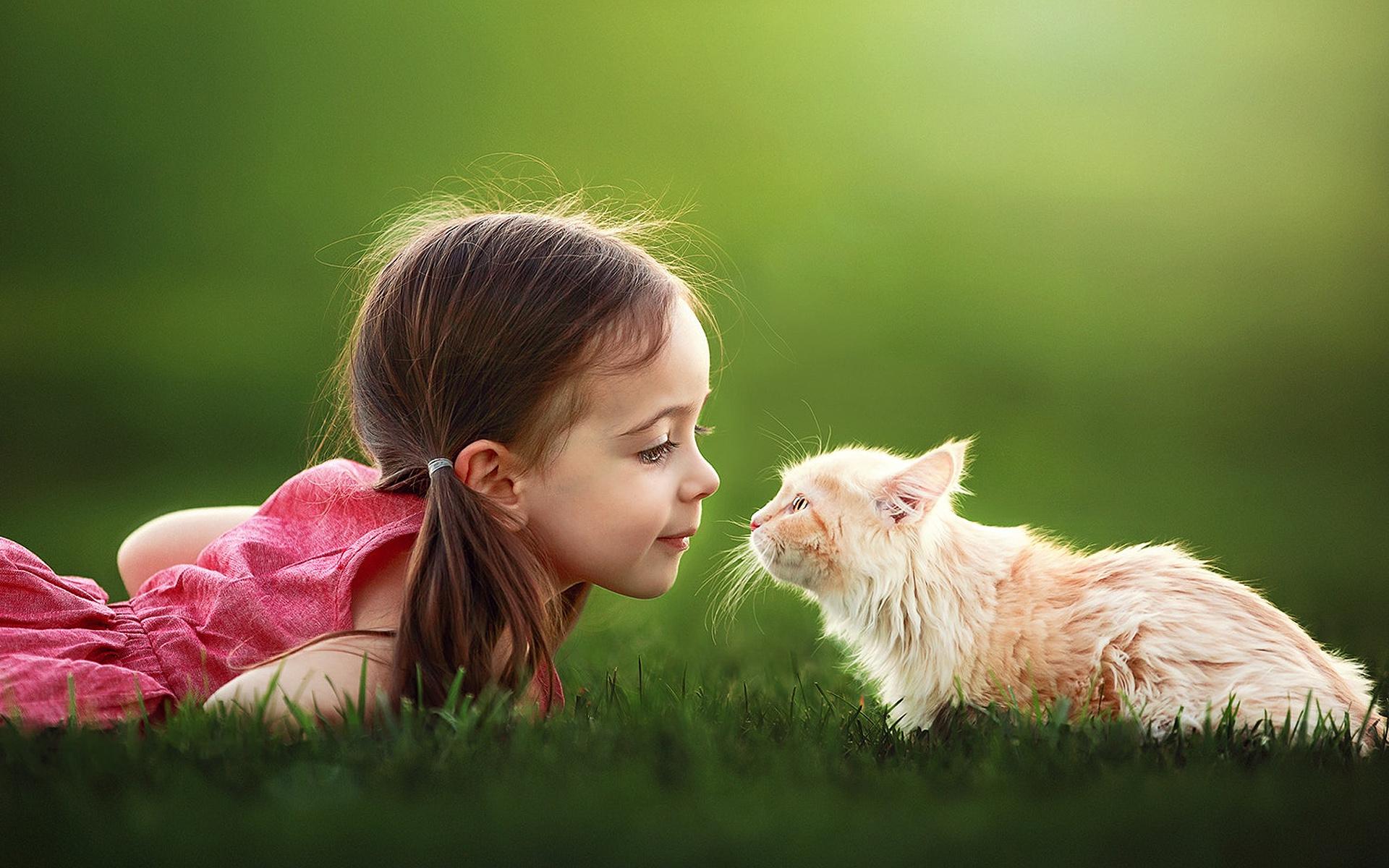 Дети и кошки красивое фото