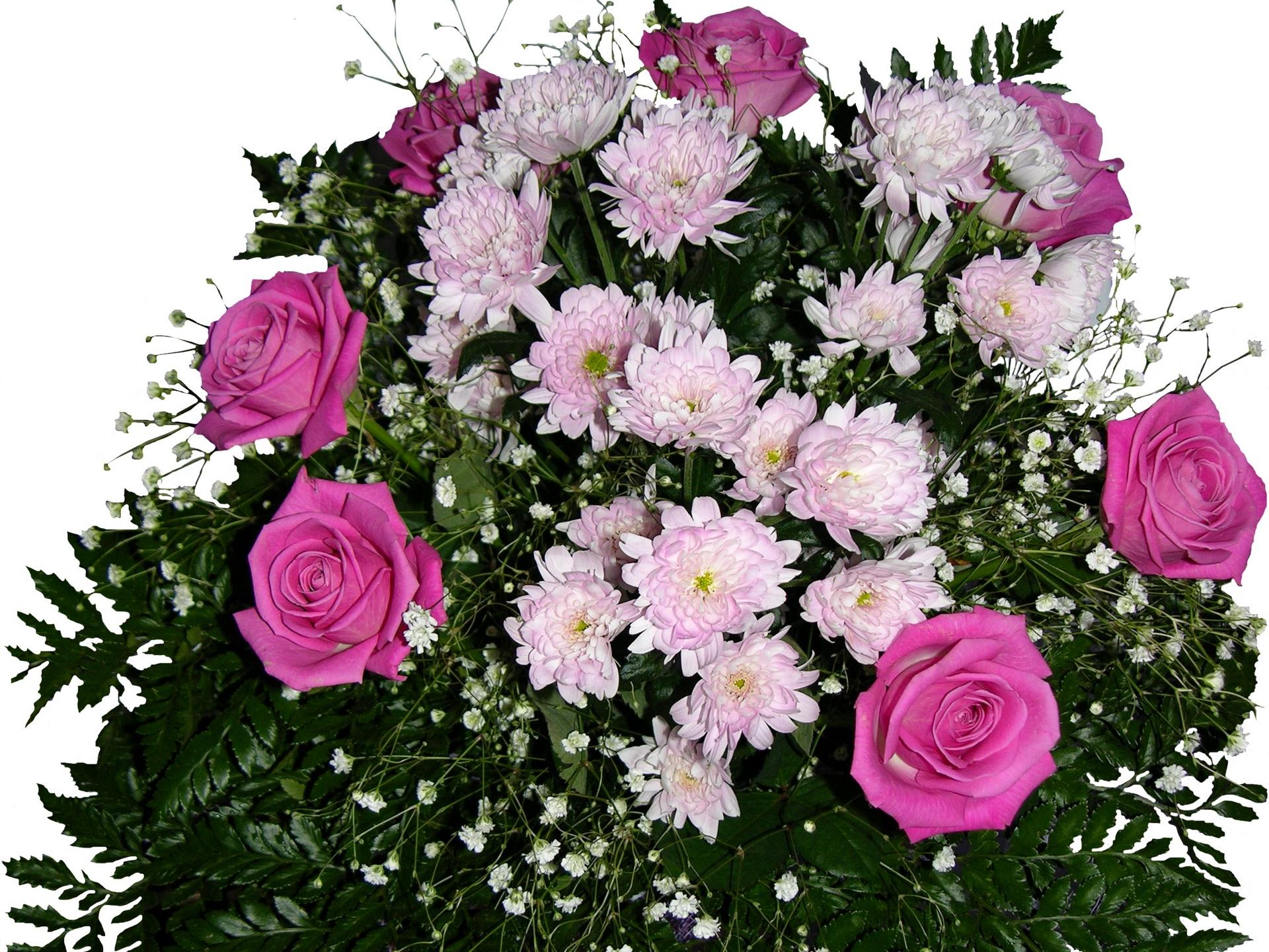 внимательно контролировал открытки с цветами красивые розы хризантемы с пожеланиями популярный микрорайон