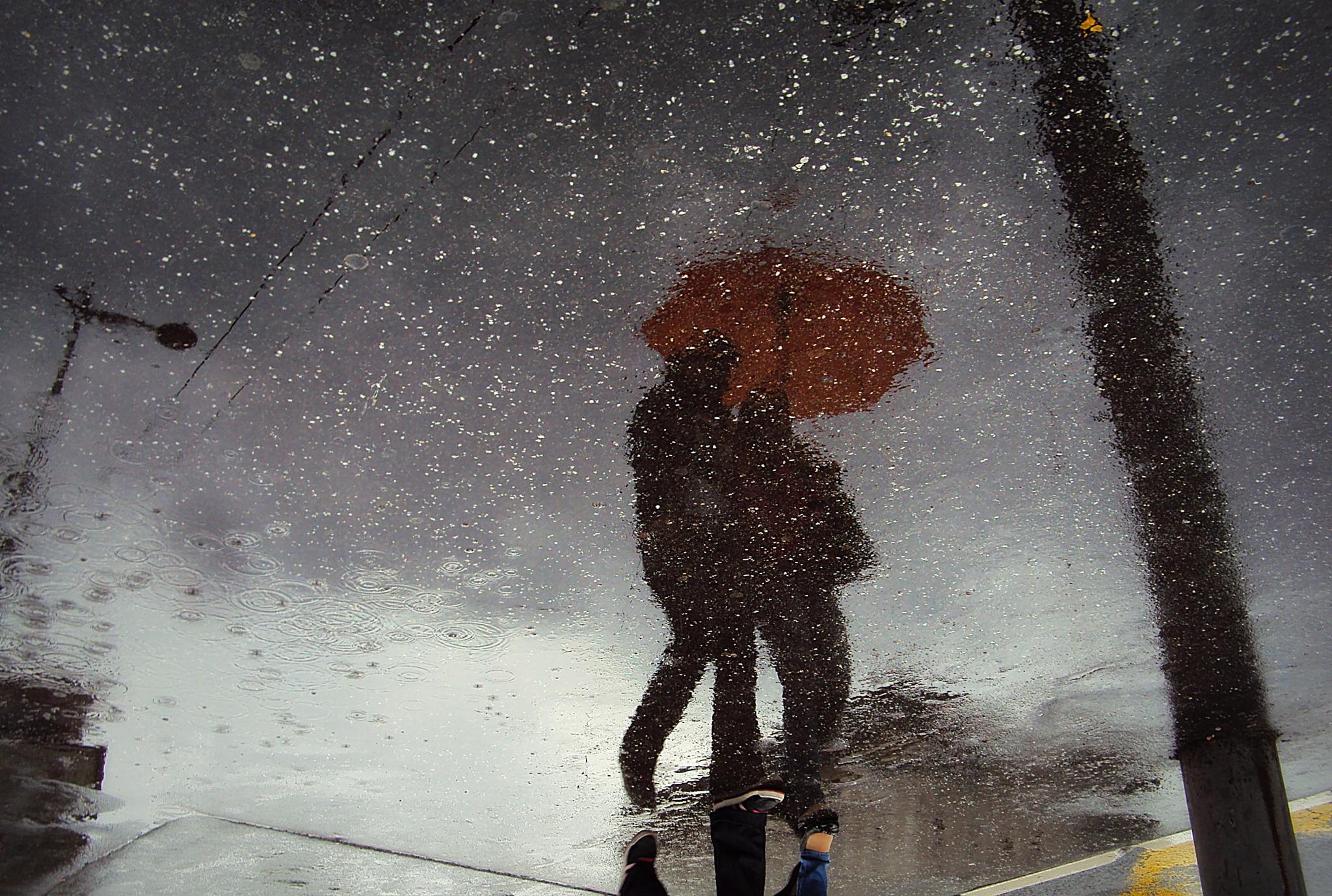меня картинки солнце дождь ветер и снег ждешь ты меня страдая значительное время