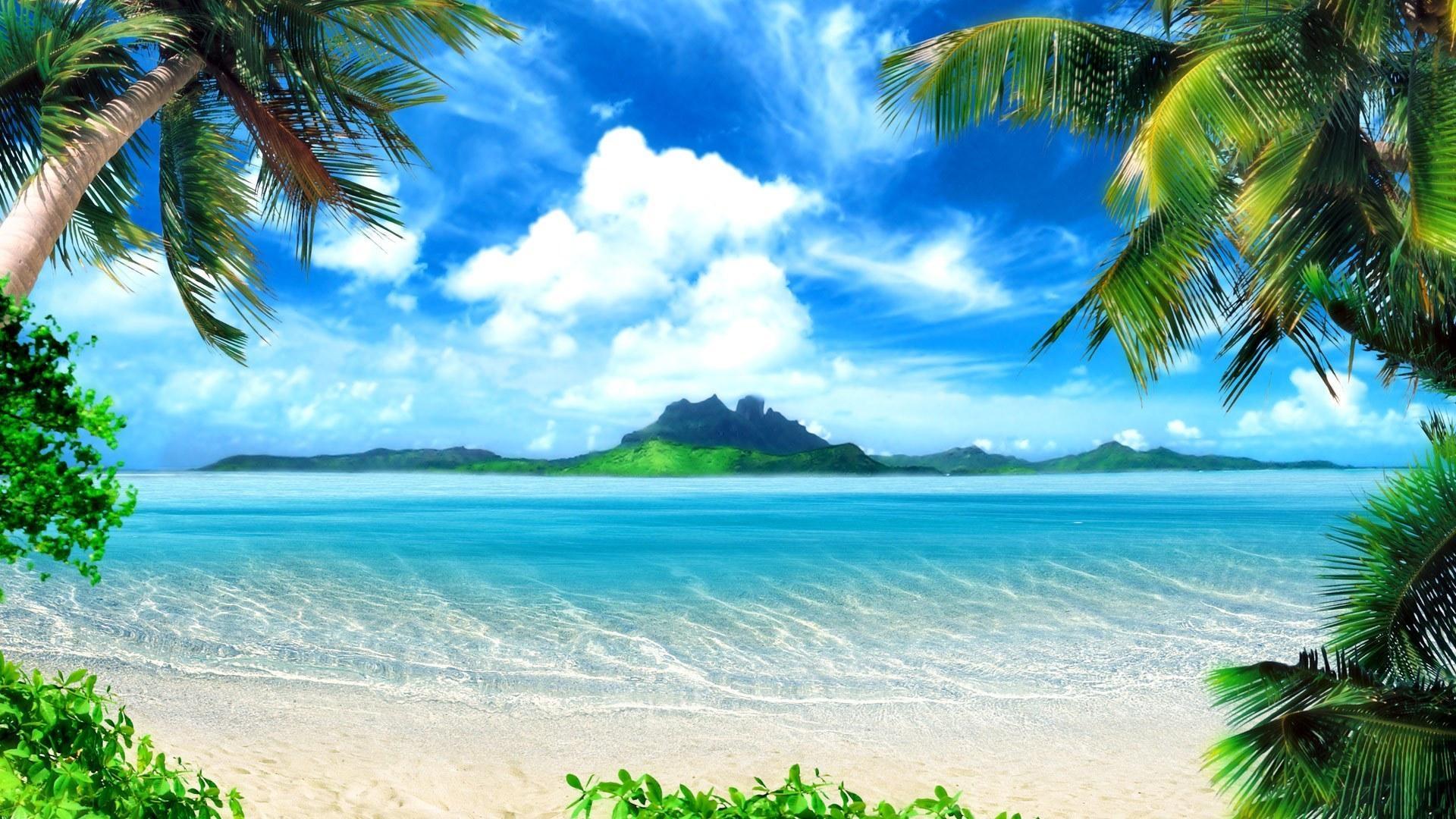 Fondos de pantalla costa azur recurso cielo nubes solarly palmeras marco playa - Playa wallpaper ...