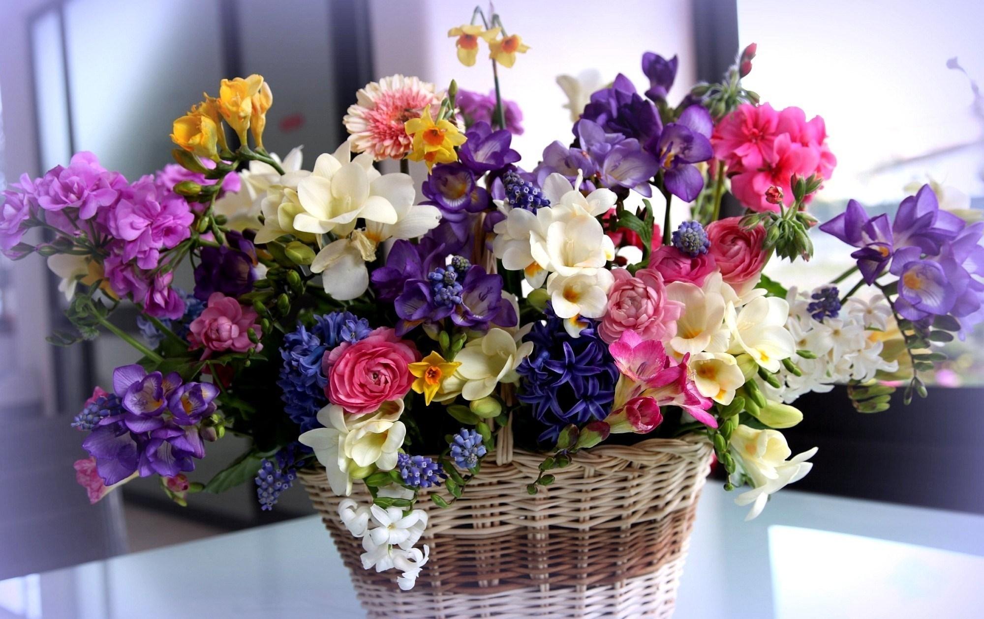 Фото красивых картинок цветов