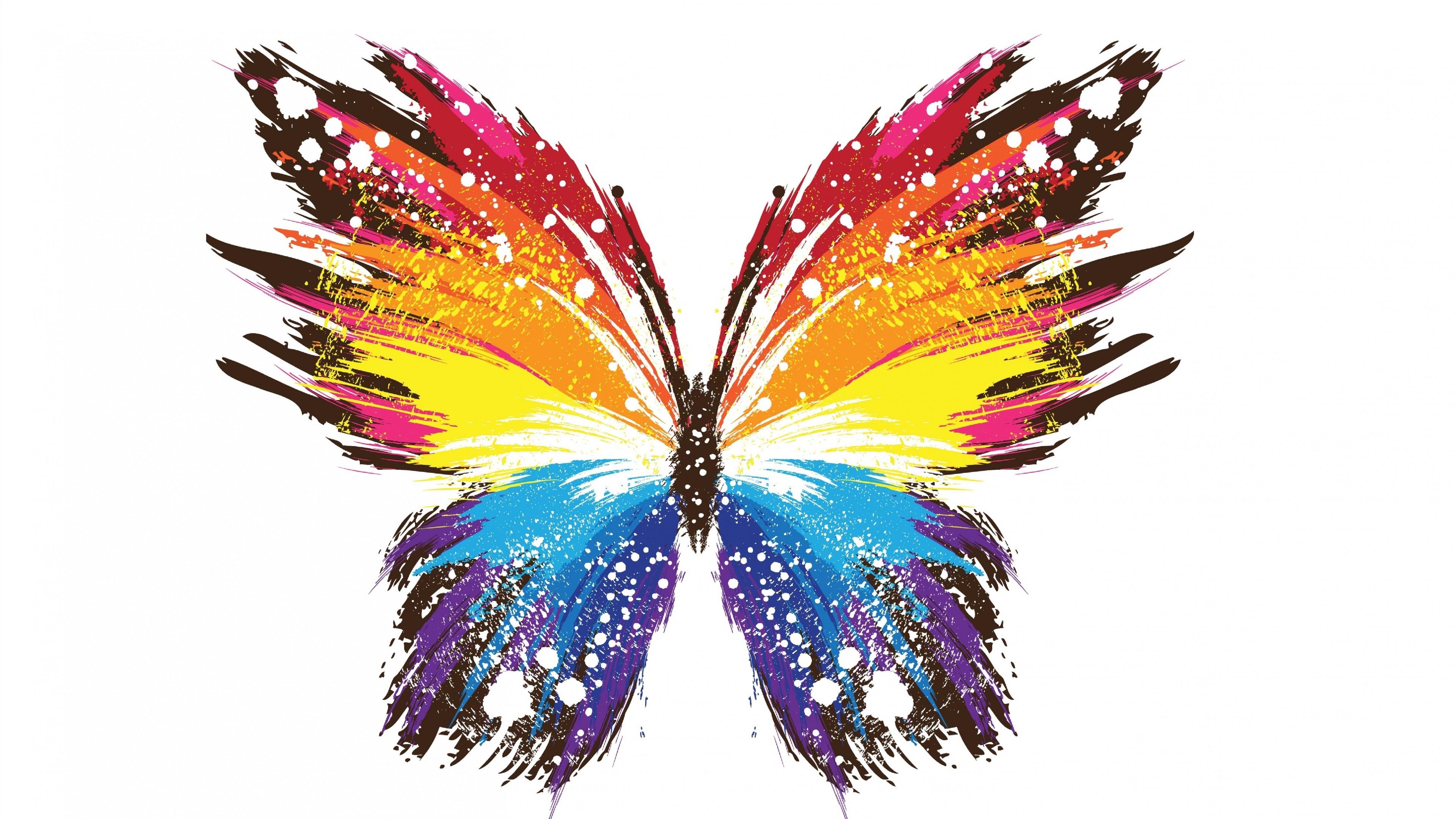 Masaustu Renkli Illustrasyon Resim Beyaz Arkaplan Kelebek