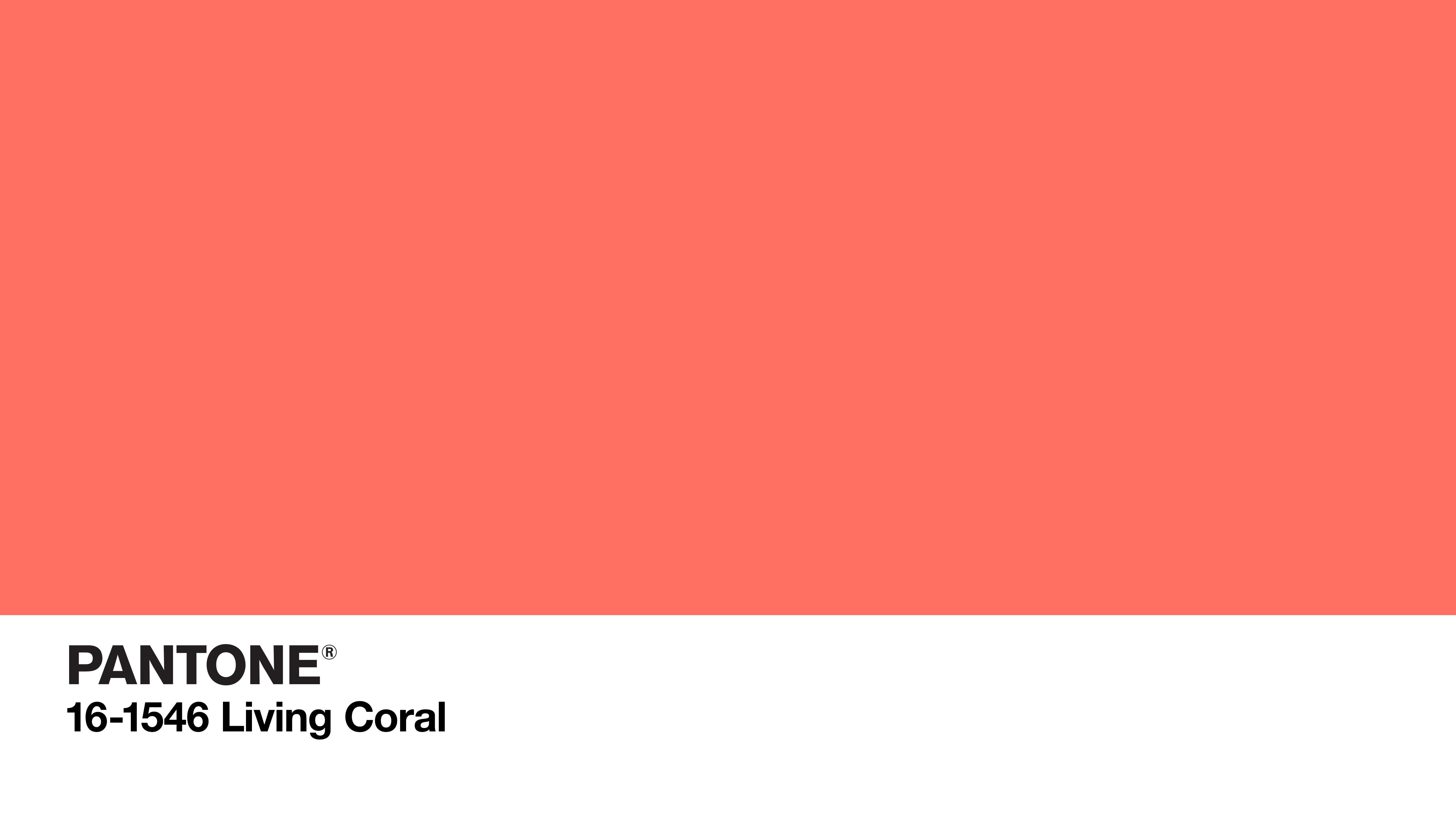 Sfondi Colorato Rosa Corallo Logo Tinta Unita Codici Colore