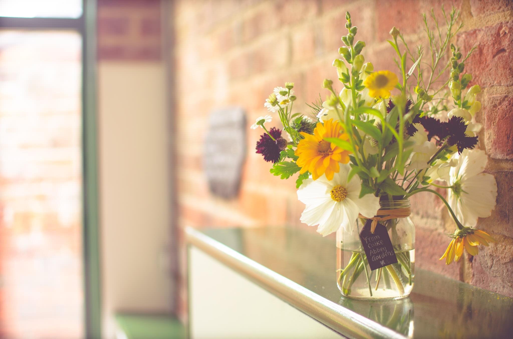 Papel De Parede Colorida Janela Flores Plantas Vasos Verde