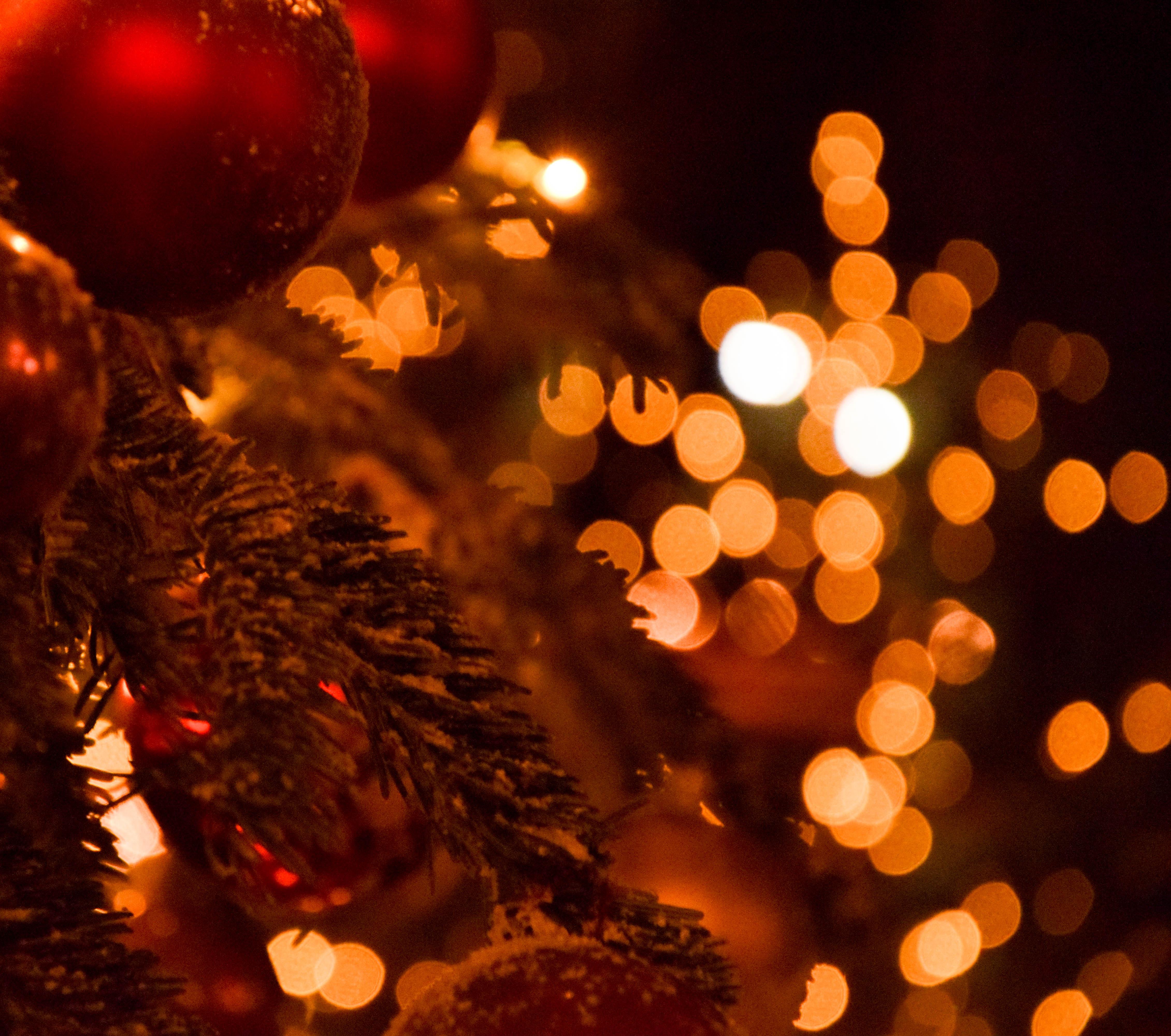 Wallpaper Contrast Night Red Winter Branch Christmas Tree Bokeh Holiday Christmas Lights Denmark Copenhagen Light Color Tree Outdoor Xmas Lighting December Vinter Ljus Julgran Julgranskulor Christmasmarket Christmasdecoration