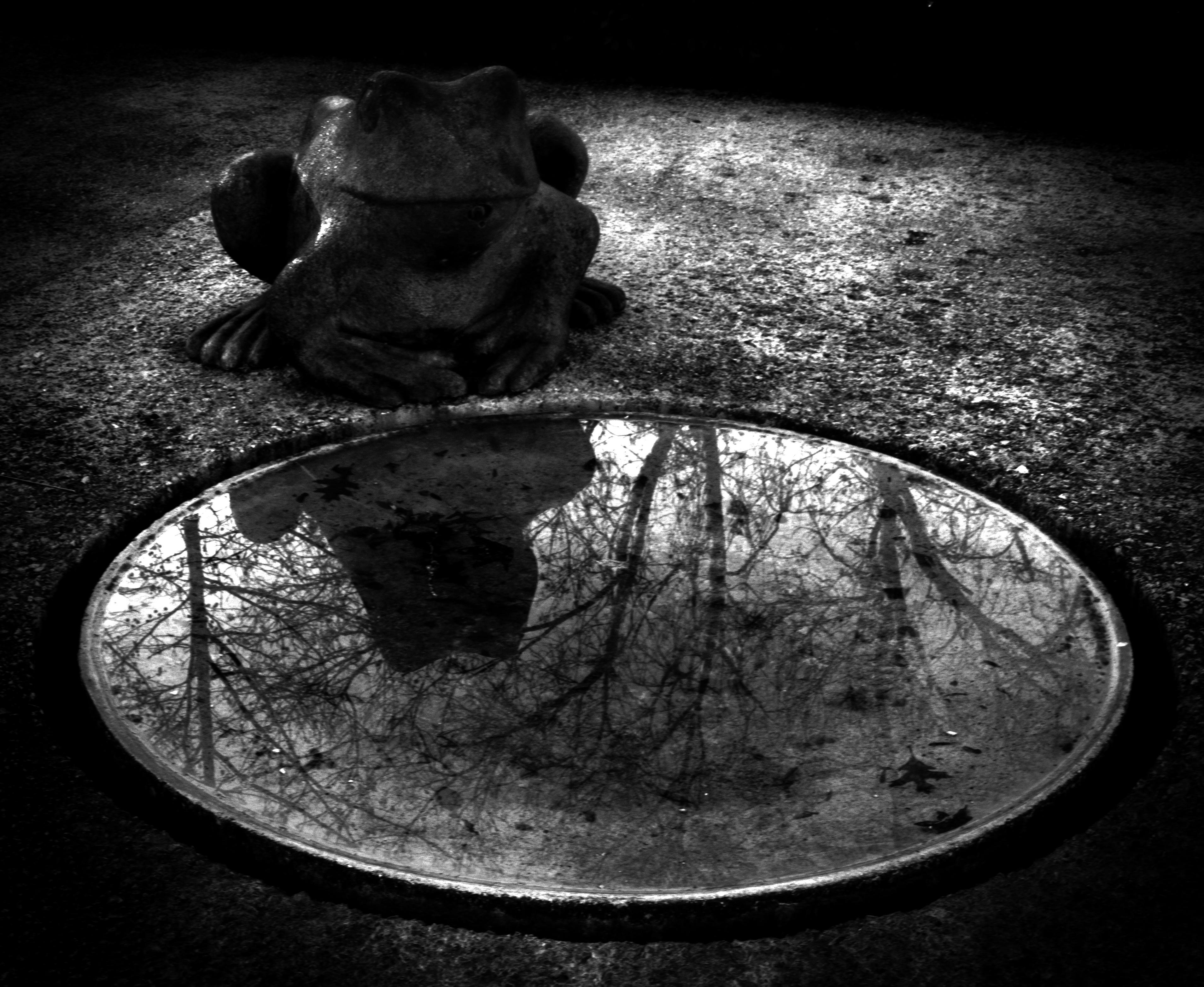 Wallpaper contrast night water reflection shadow moon grey