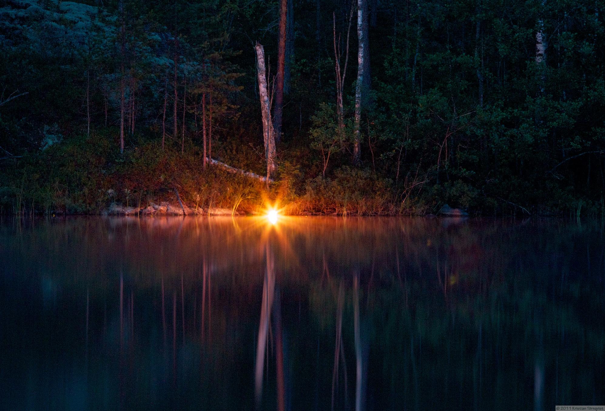 картинки лесное озеро ночью все лето