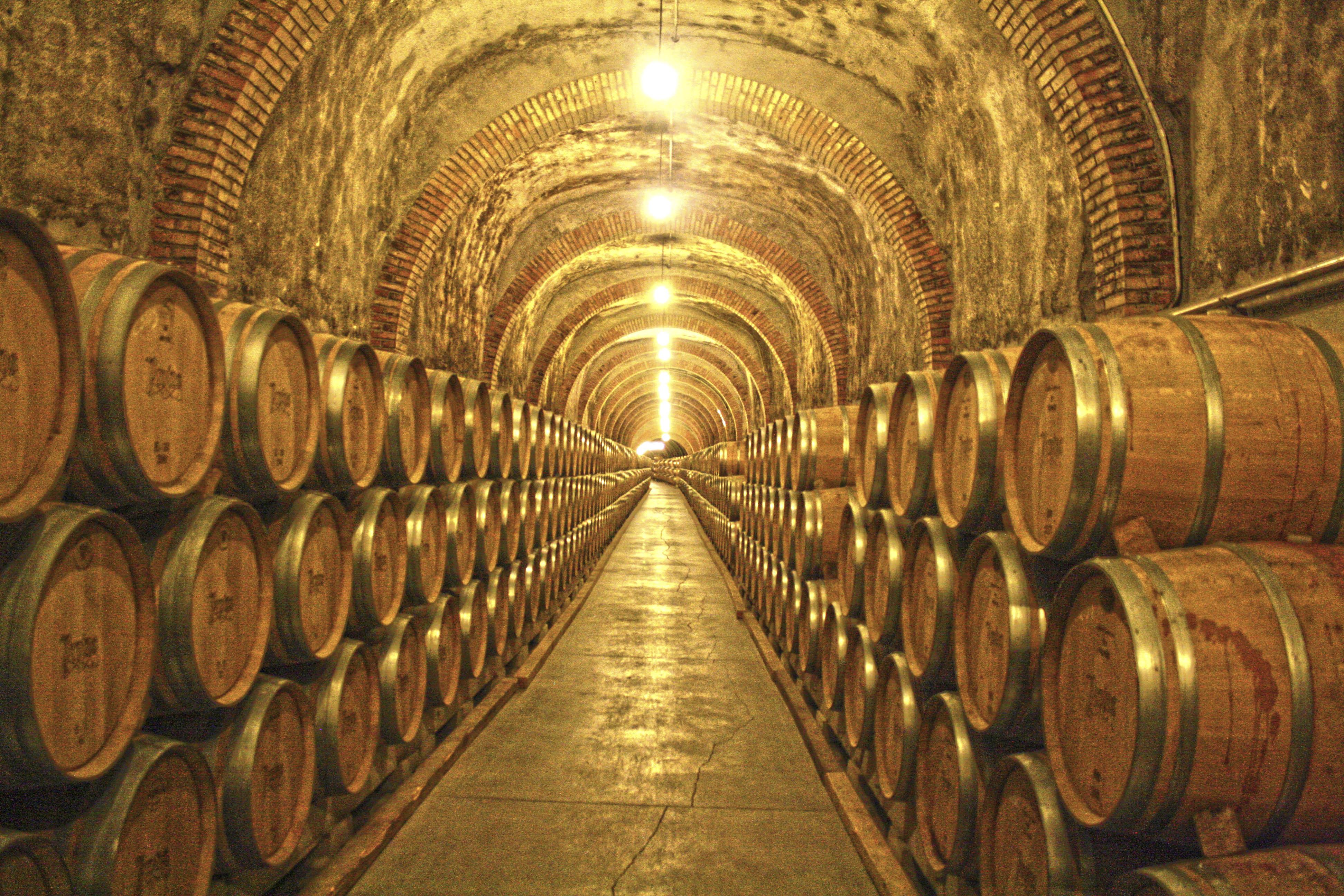 de-wine-bodega-cellar-vino-ribera-duero-protos-simetria-cubas-pe-afiel-976575.jpg