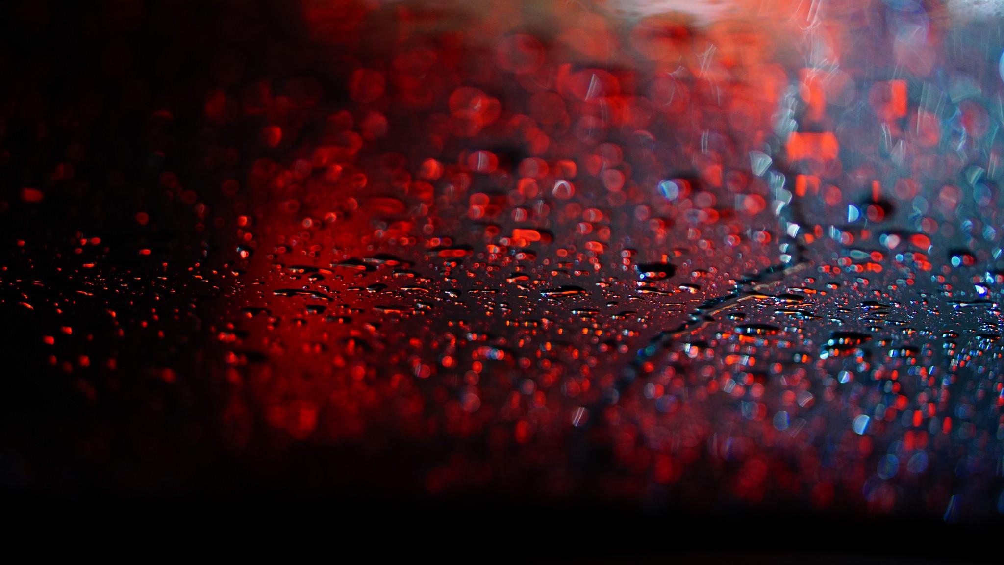 перепелок составление картинки дождя для ютуба тому