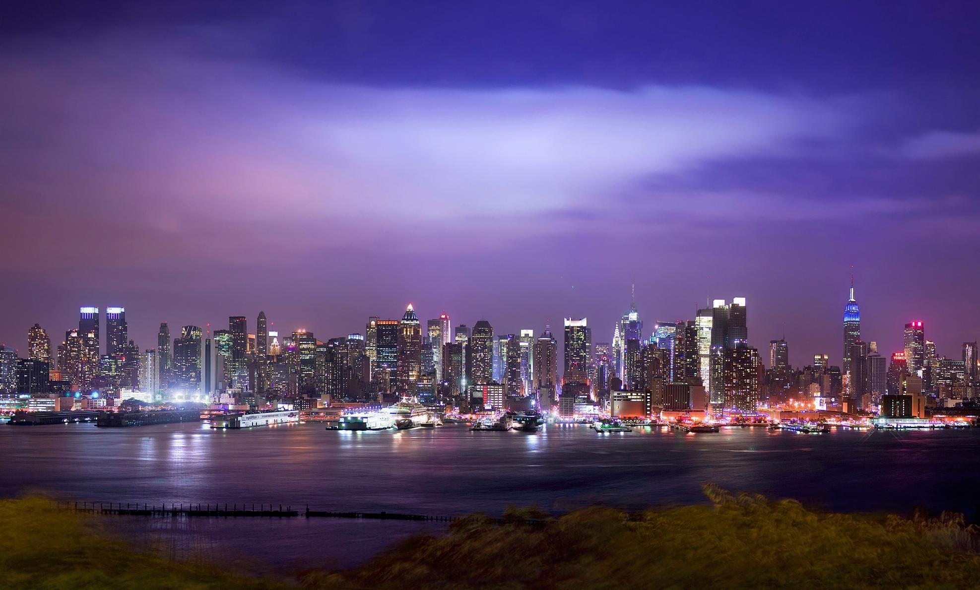 фото панорамы ночной город диких животных