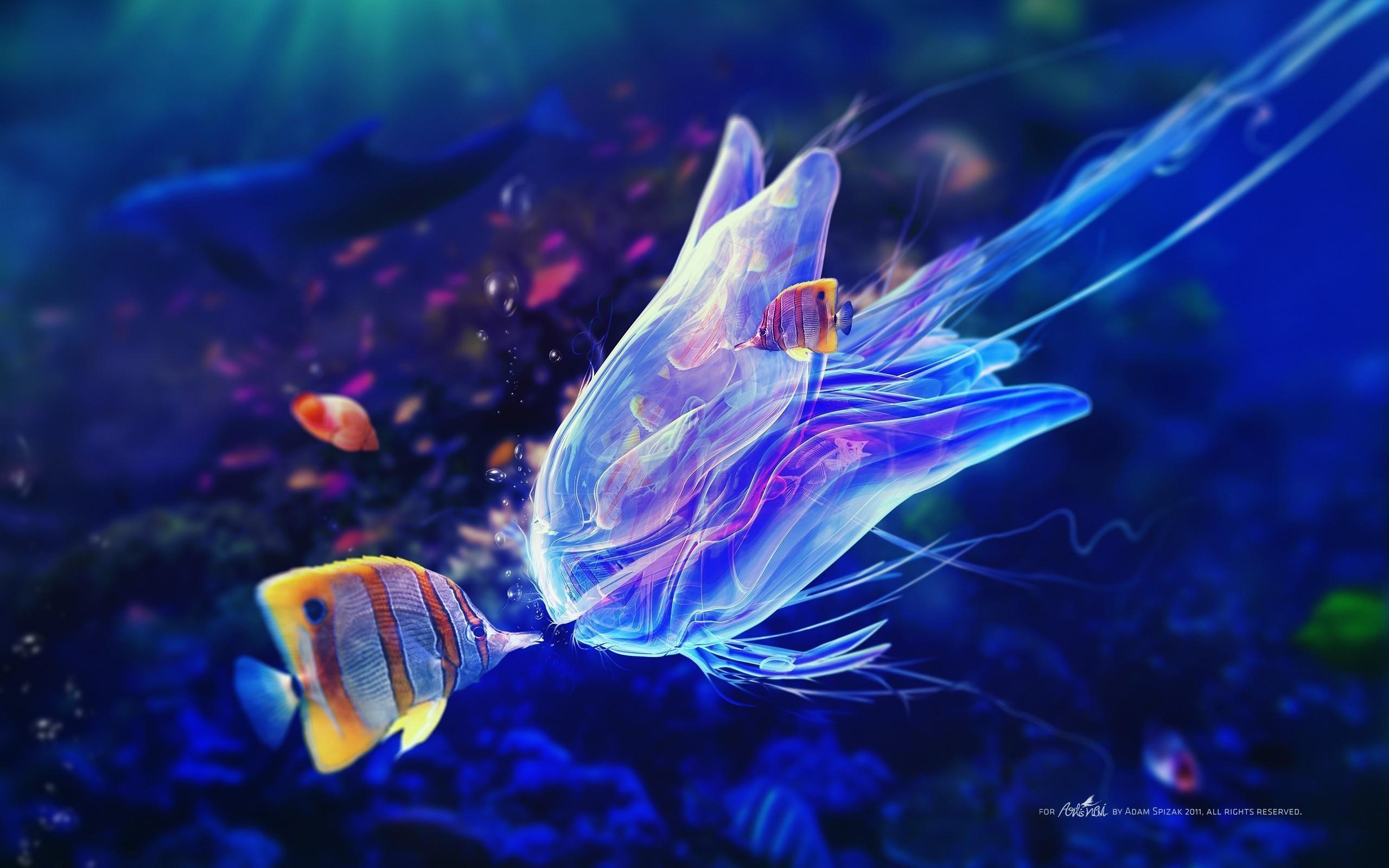 Fond d'écran : art numérique, poisson, sous-marin, Bisous, aquarium, Adam Spizak, 2560x1600 px ...