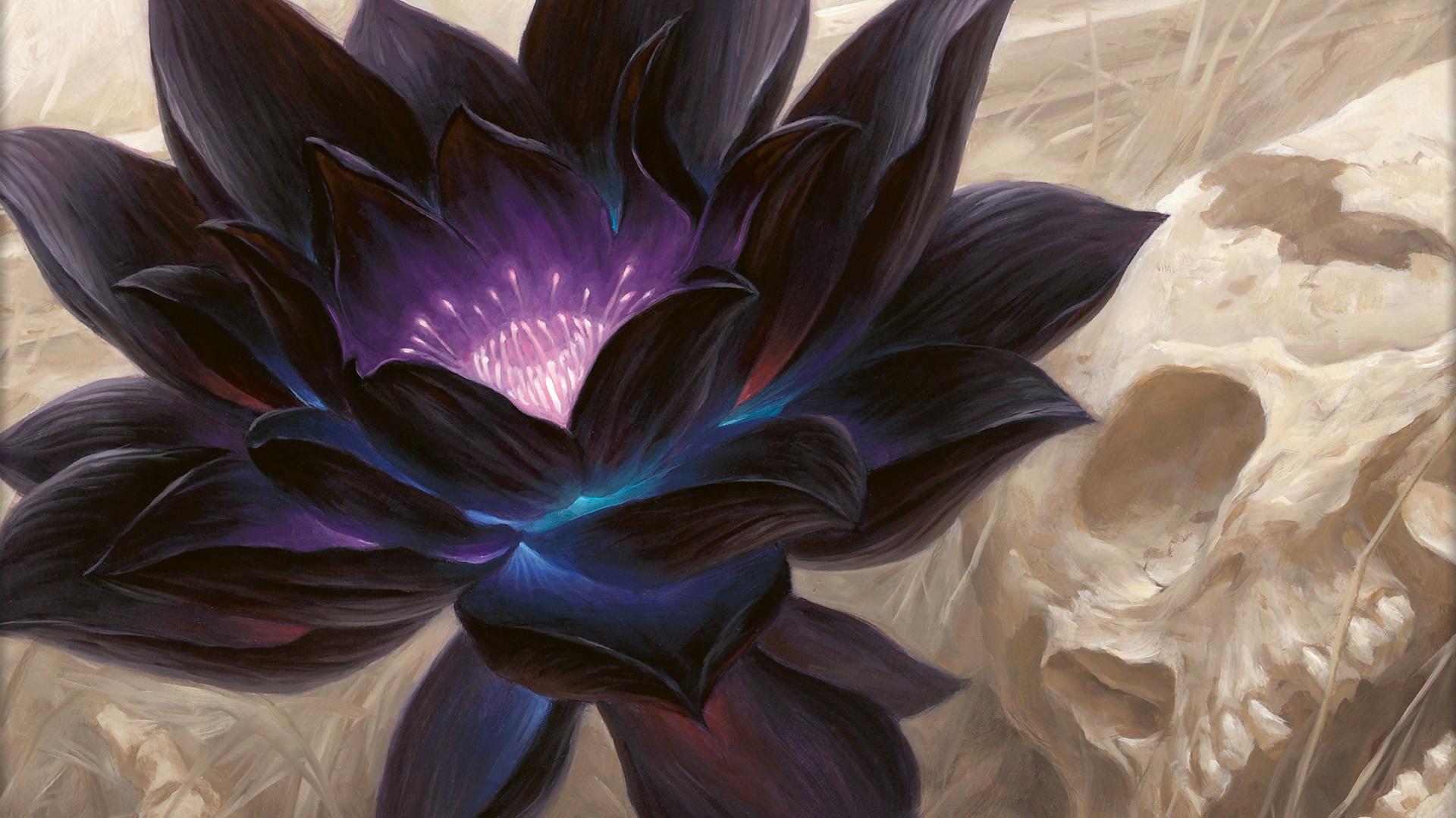Wallpaper Digital Art Lotus Flowers Skull 1920x1080 Alex93s