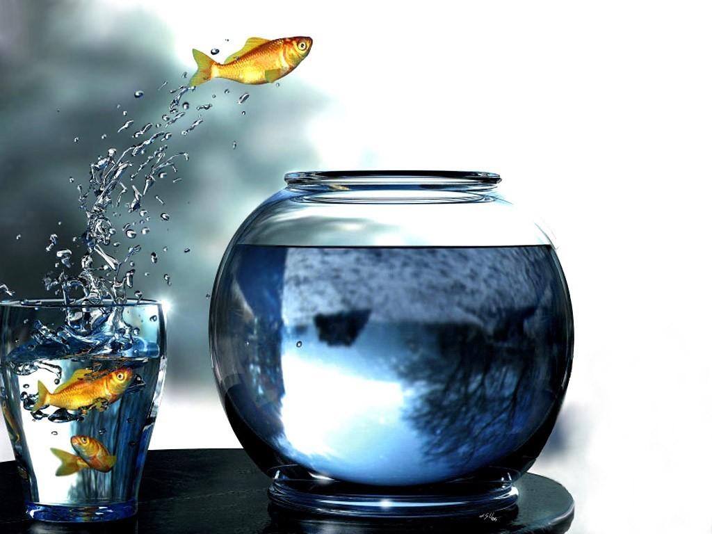 Hintergrundbilder digitale kunst wasser springen for Distilled water for fish