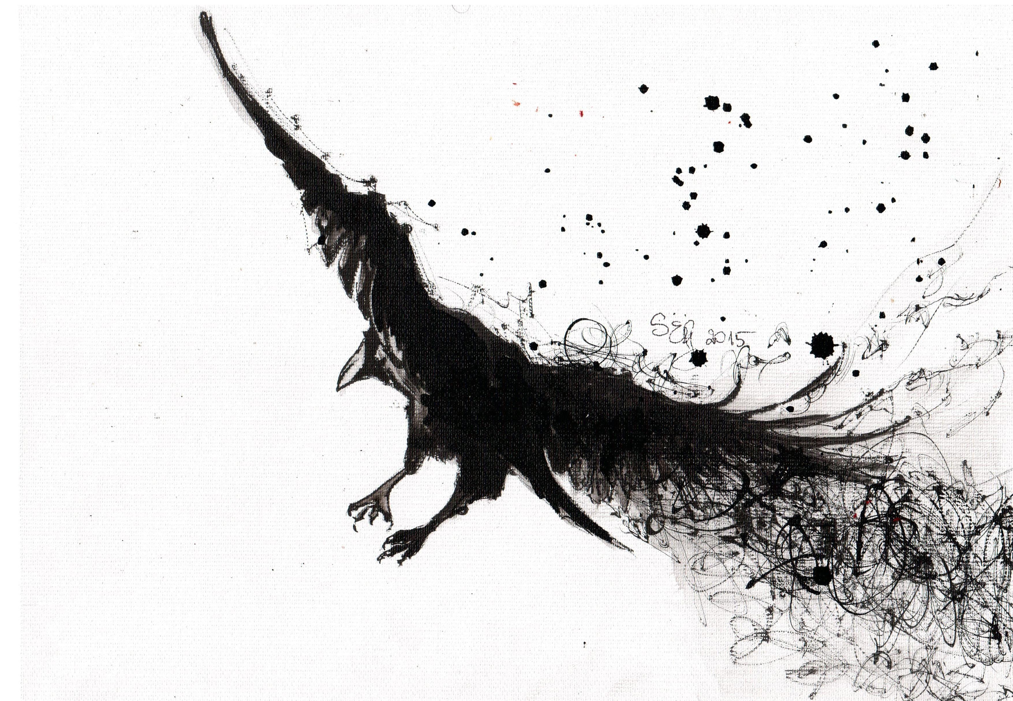 Fond Décran Dessin Des Oiseaux Monochrome Branche