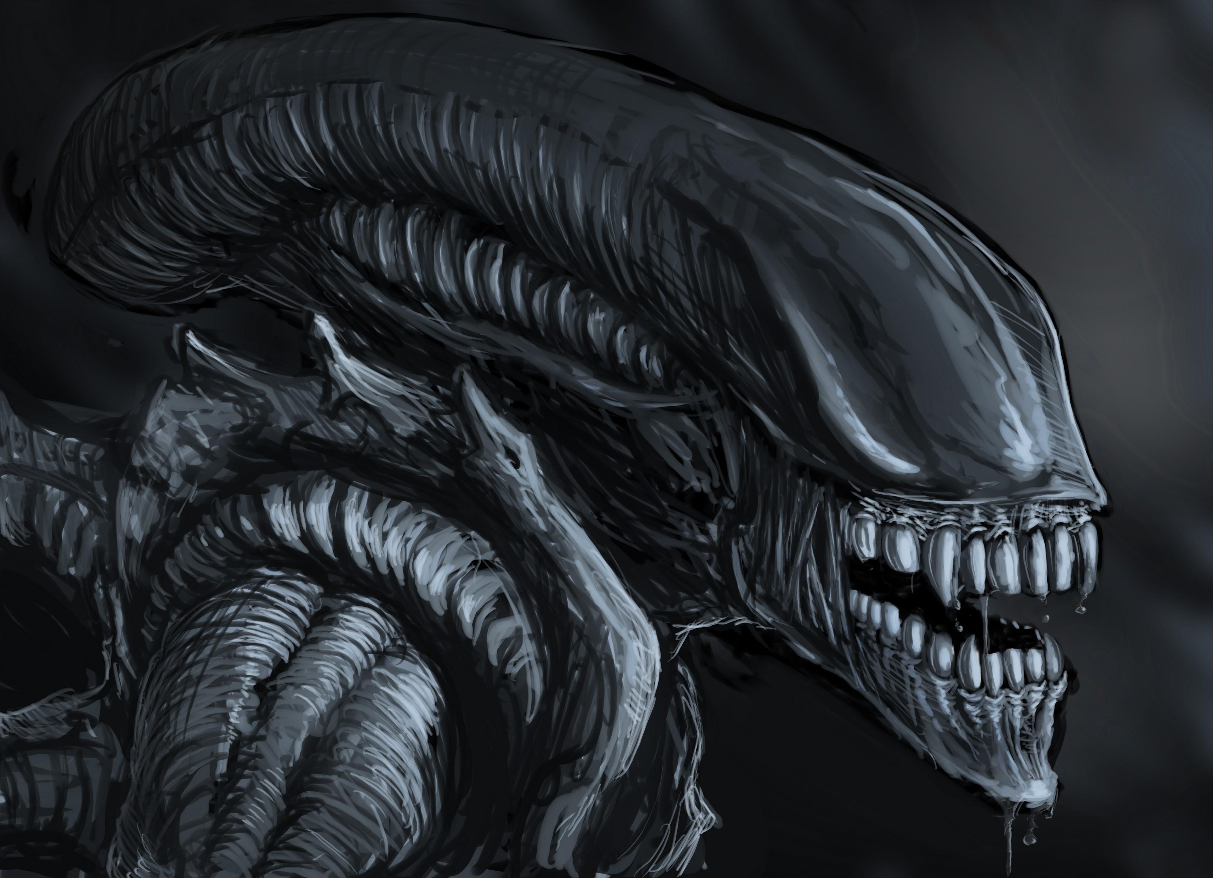 Wallpaper : drawing, illustration, artwork, Xenomorph, Alien