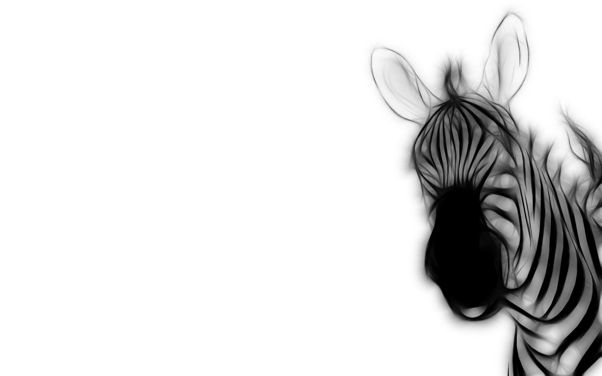 Sfondi : disegno cartone animato orecchie mano zebra schizzo
