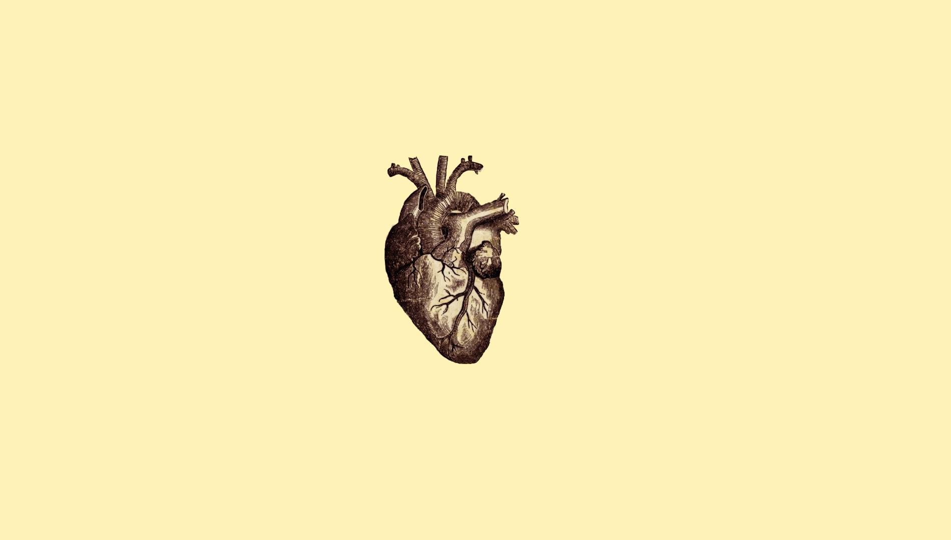 Wallpaper Drawing Illustration Digital Art Simple