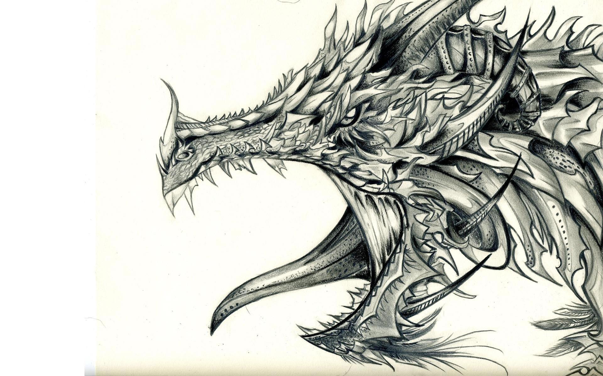 Wallpaper ilustrasi seni fantasi karya seni gambar kartun naga gambar ilustrasi seni fantasi karya seni gambar kartun naga sayap sketsa karakter fiksi altavistaventures Images