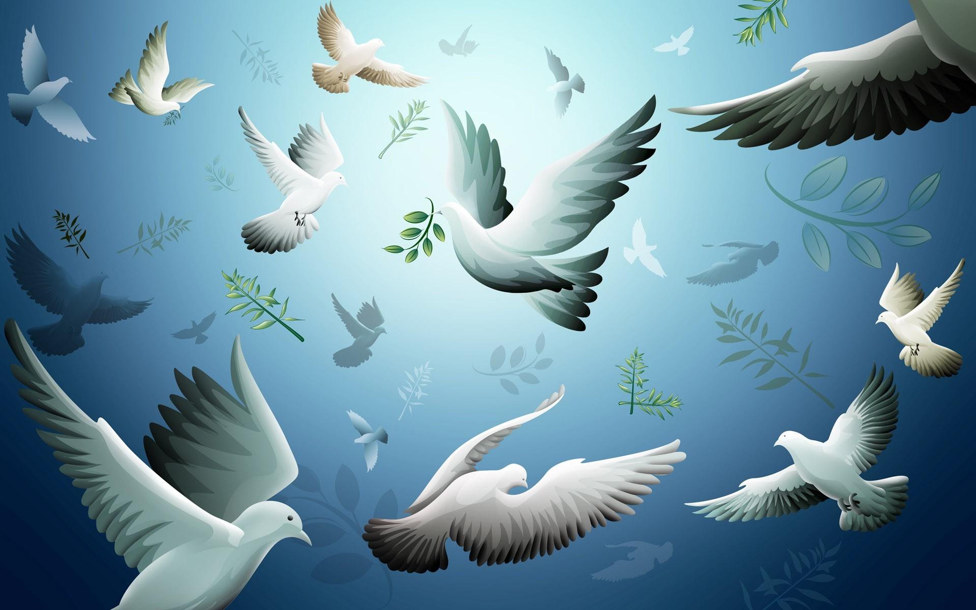 Wallpaper Drawing Illustration Flying Dove Bird Wing