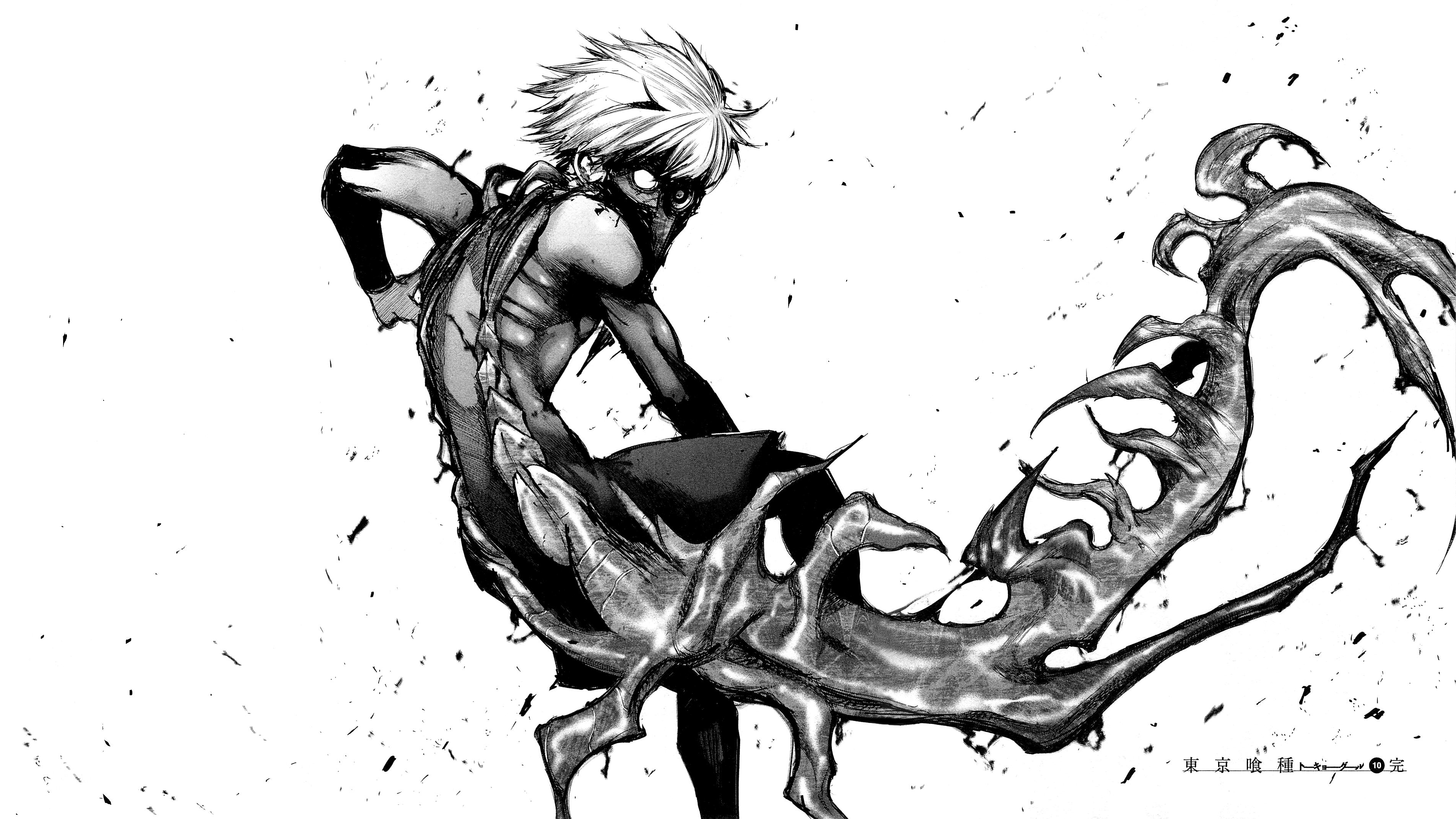 Sfondi disegno illustrazione monocromo manga cartone
