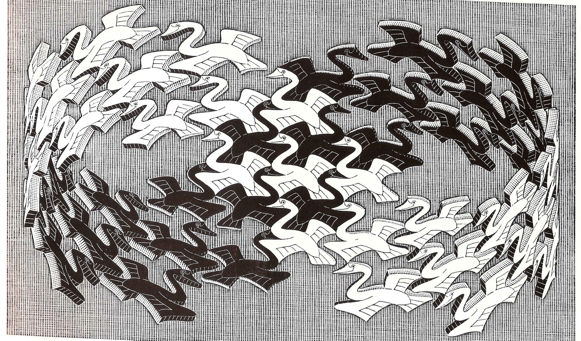 Wallpaper drawing pattern art tree design black and