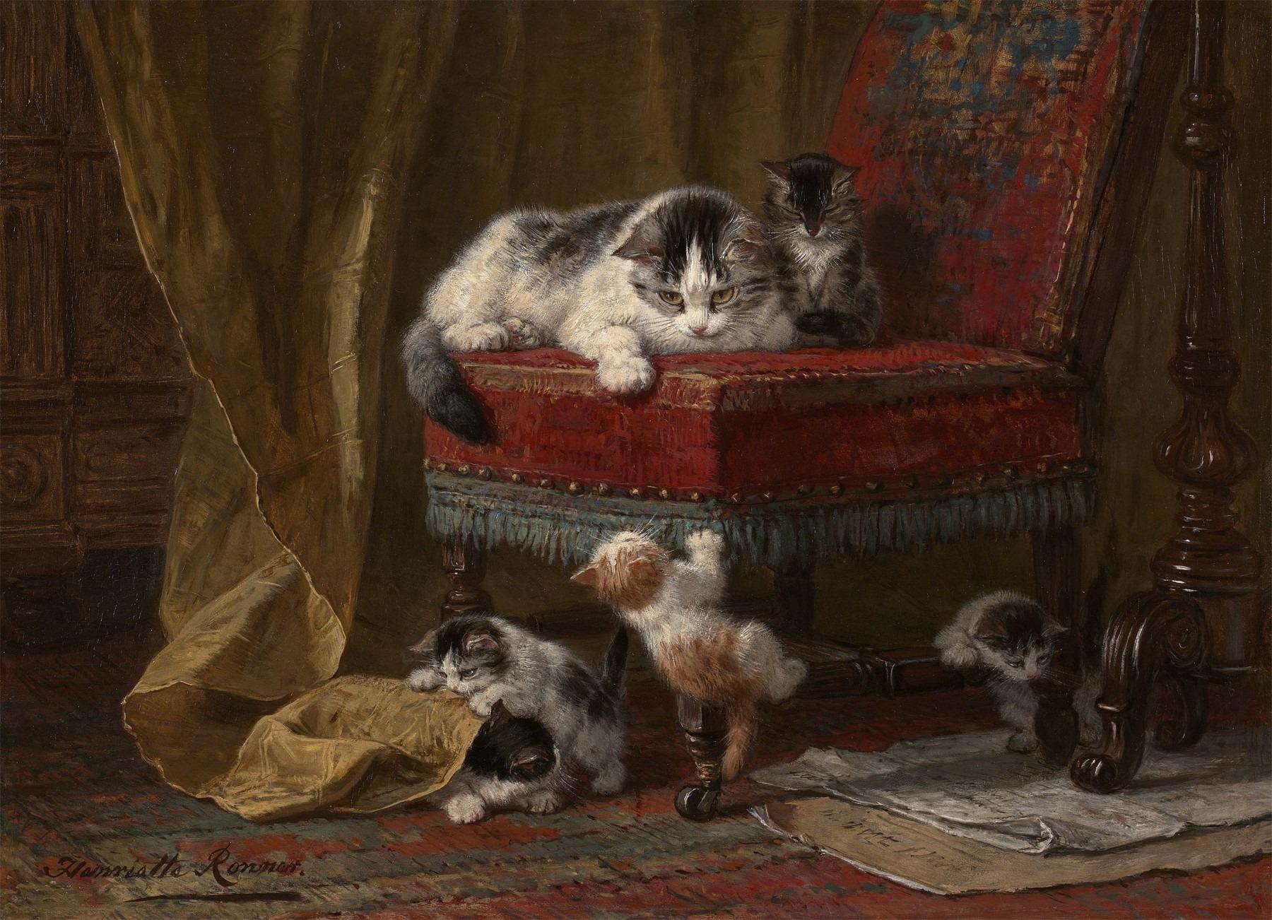Masaustu Cizim Boyama Biyik Kediler Kedi Yavrusu Cok Kedi