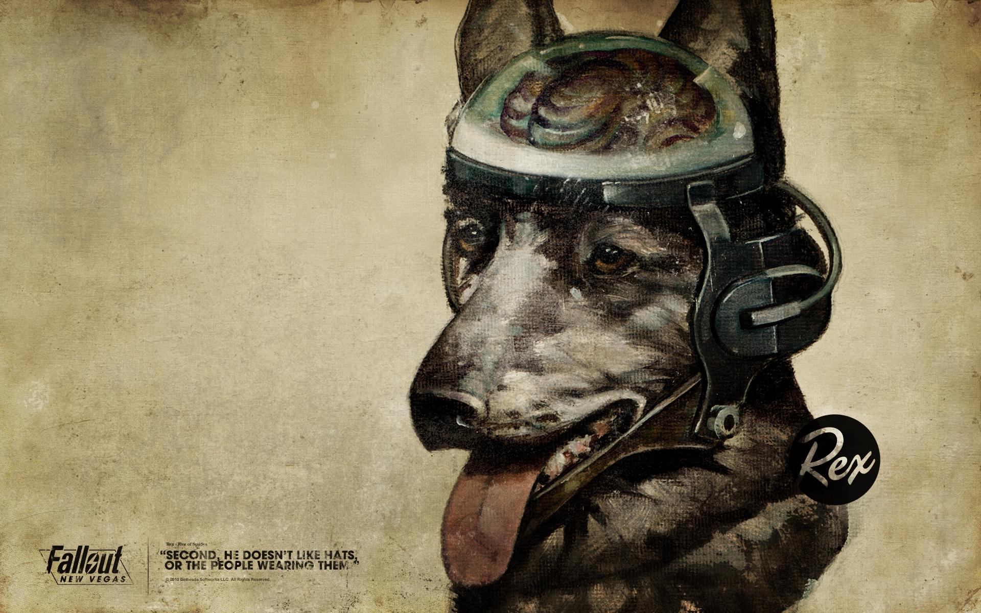 Masaüstü çizim Boyama Alıntı Portre Köpek Araları Açılmak