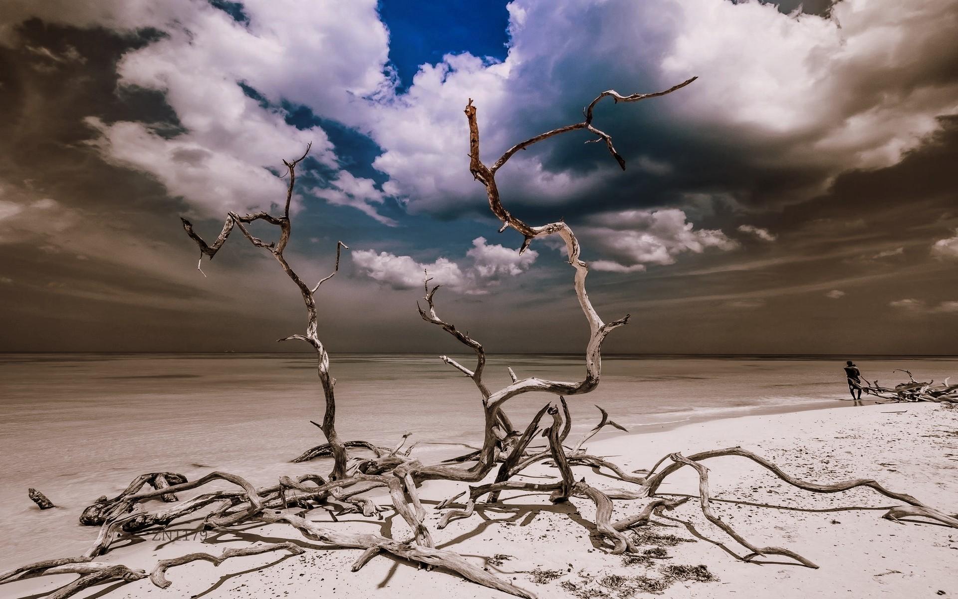 Wallpaper Gambar Laut Pasir Langit Pantai Angin SENI