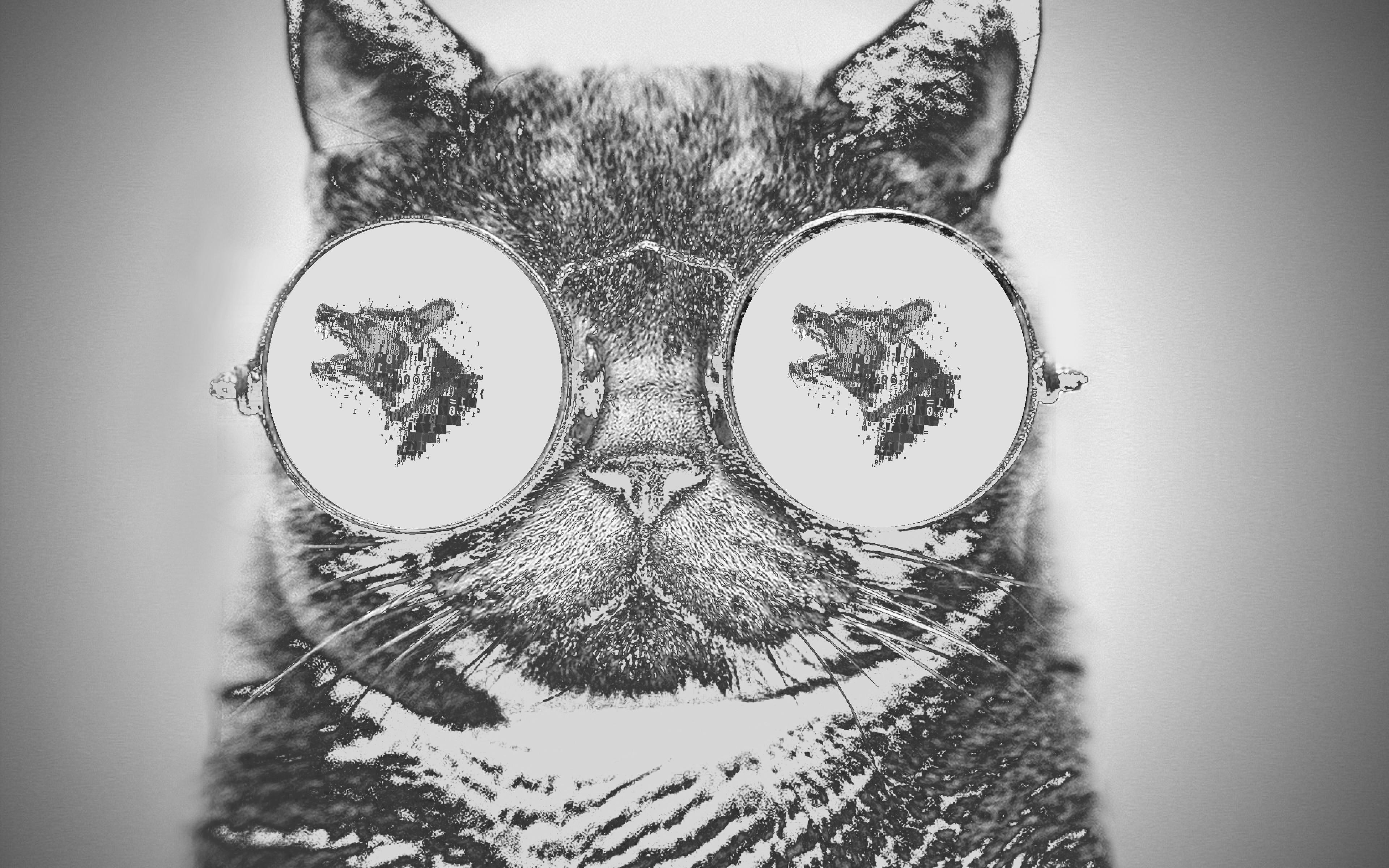 Fondos De Pantalla Dibujo Ilustración Gato Animales